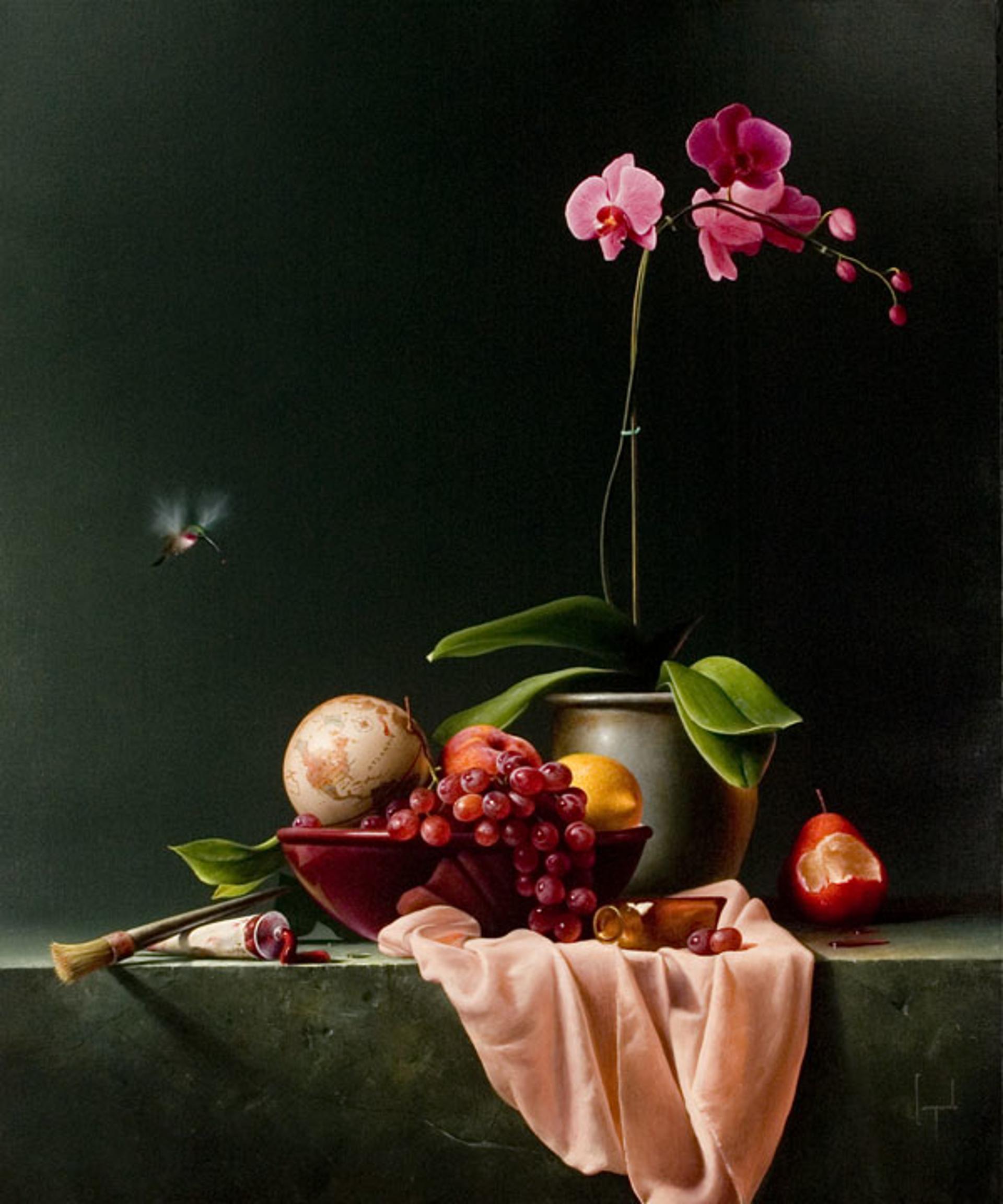 Un Bellissimo Mondo by Dario Campanile