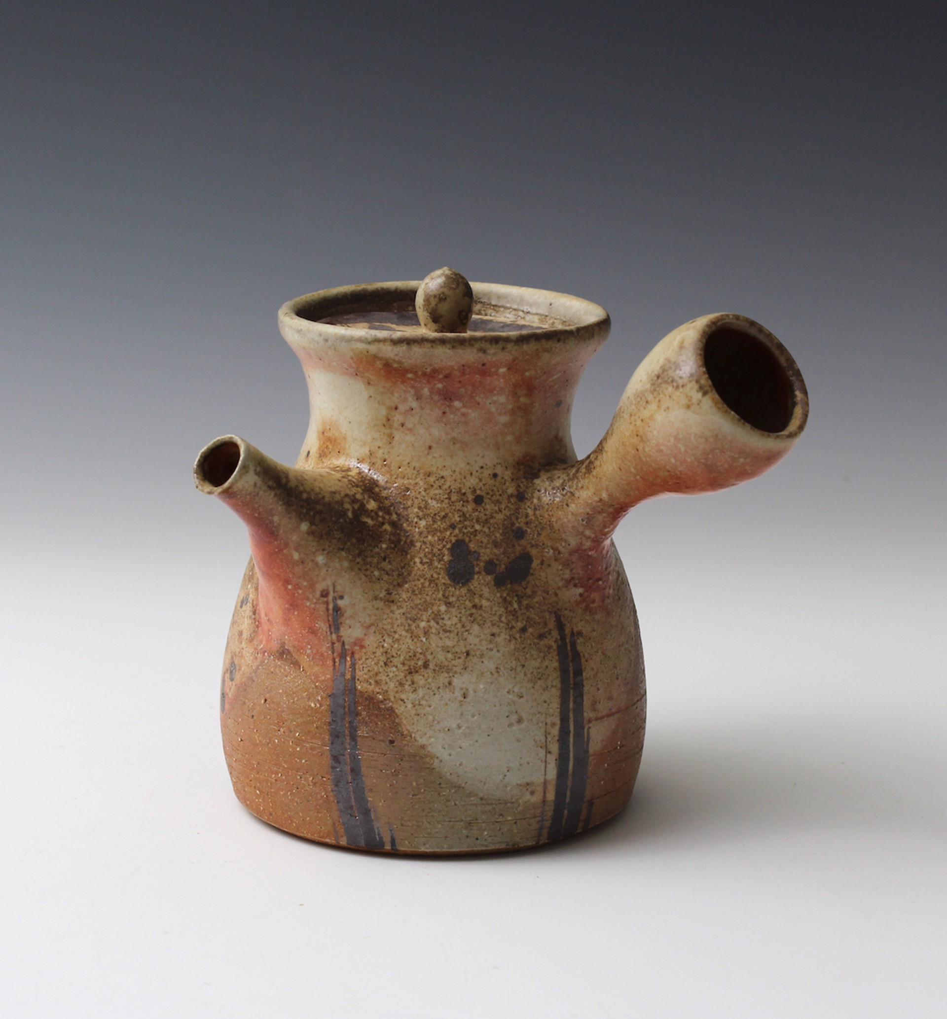 Wood Fired Teapot by Hitomi Shibata