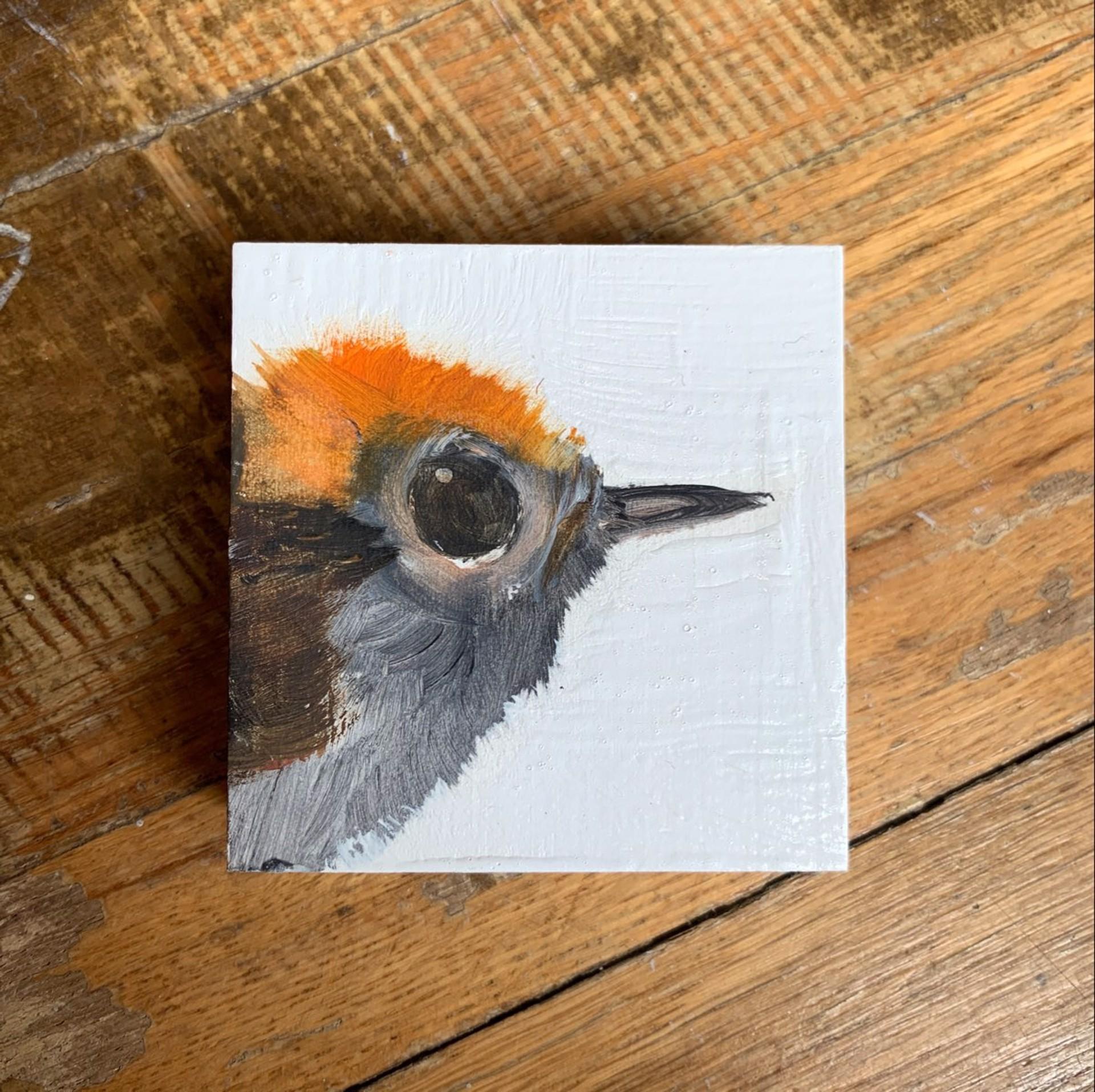 Bird Block by Diane Kilgore Condon