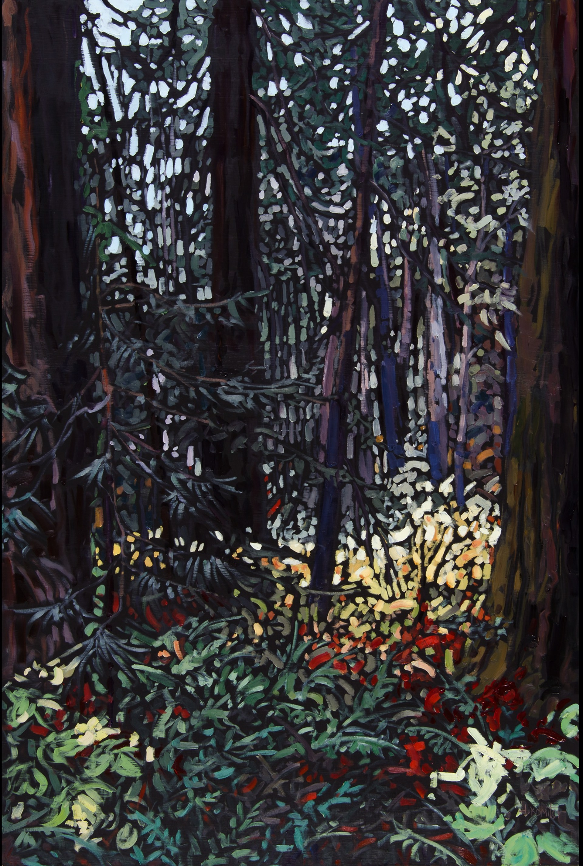 Dancing Light On the Forest Floor by Deb Komitor