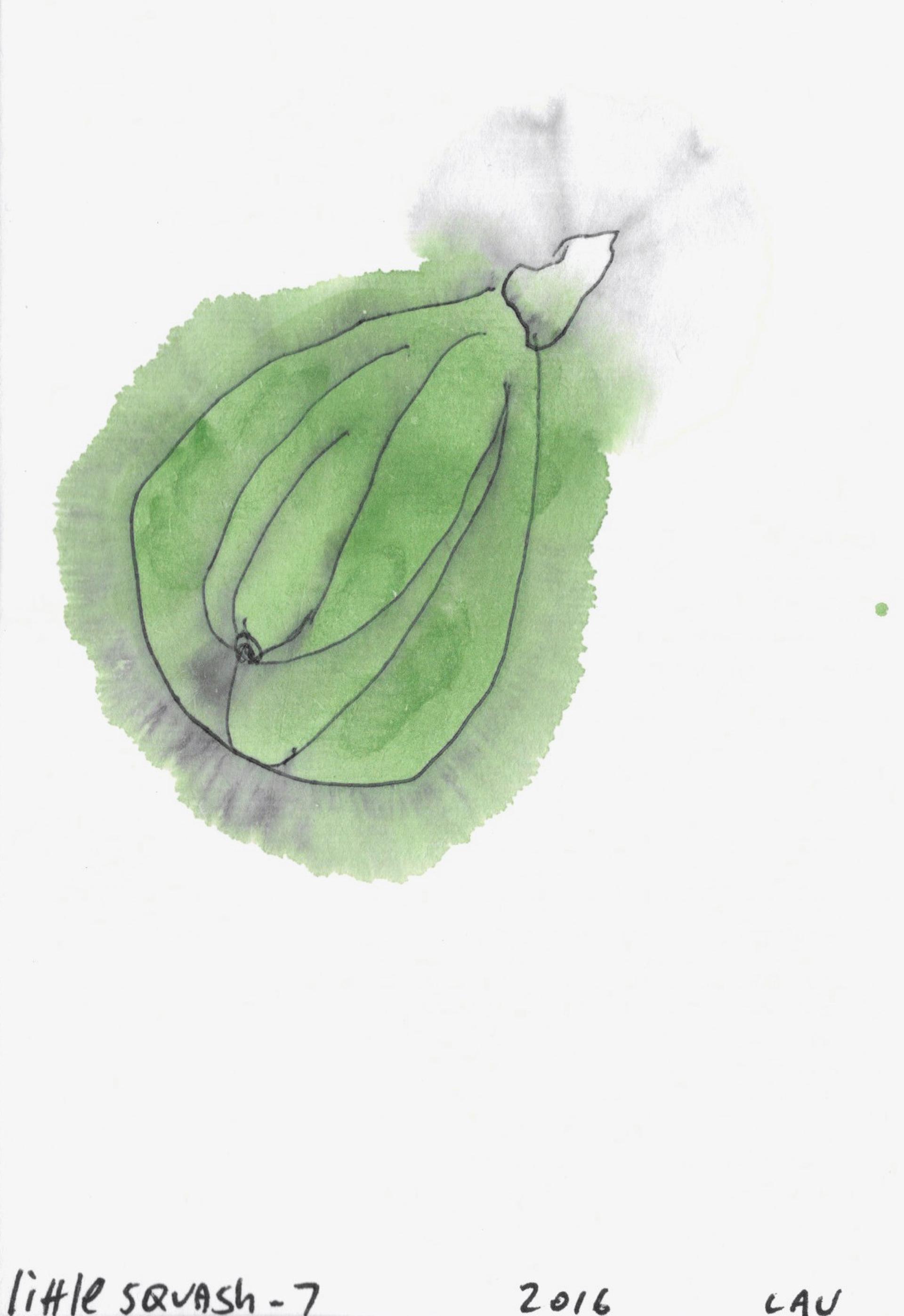 little squash #7 by Alan Lau