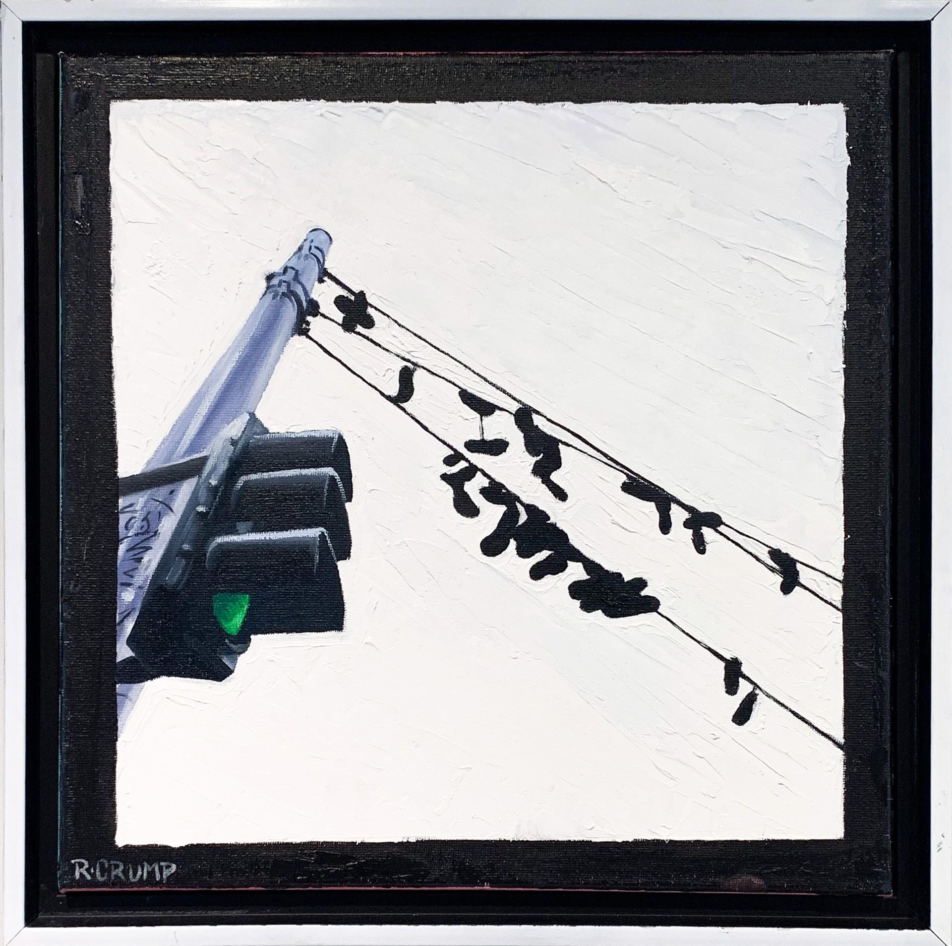 Like the Birds by Rapheal Crump