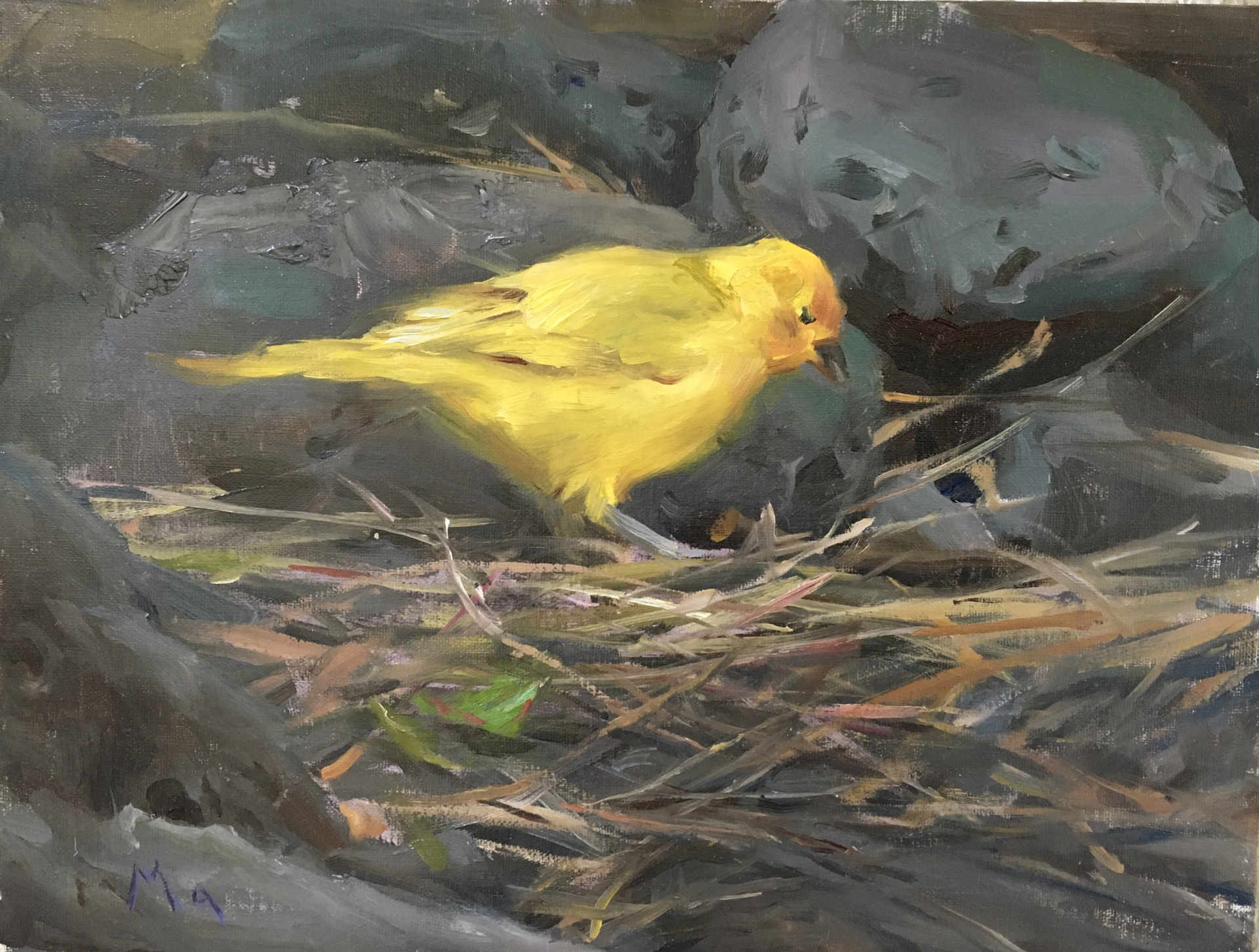 Yellow Bird by Kyle Ma