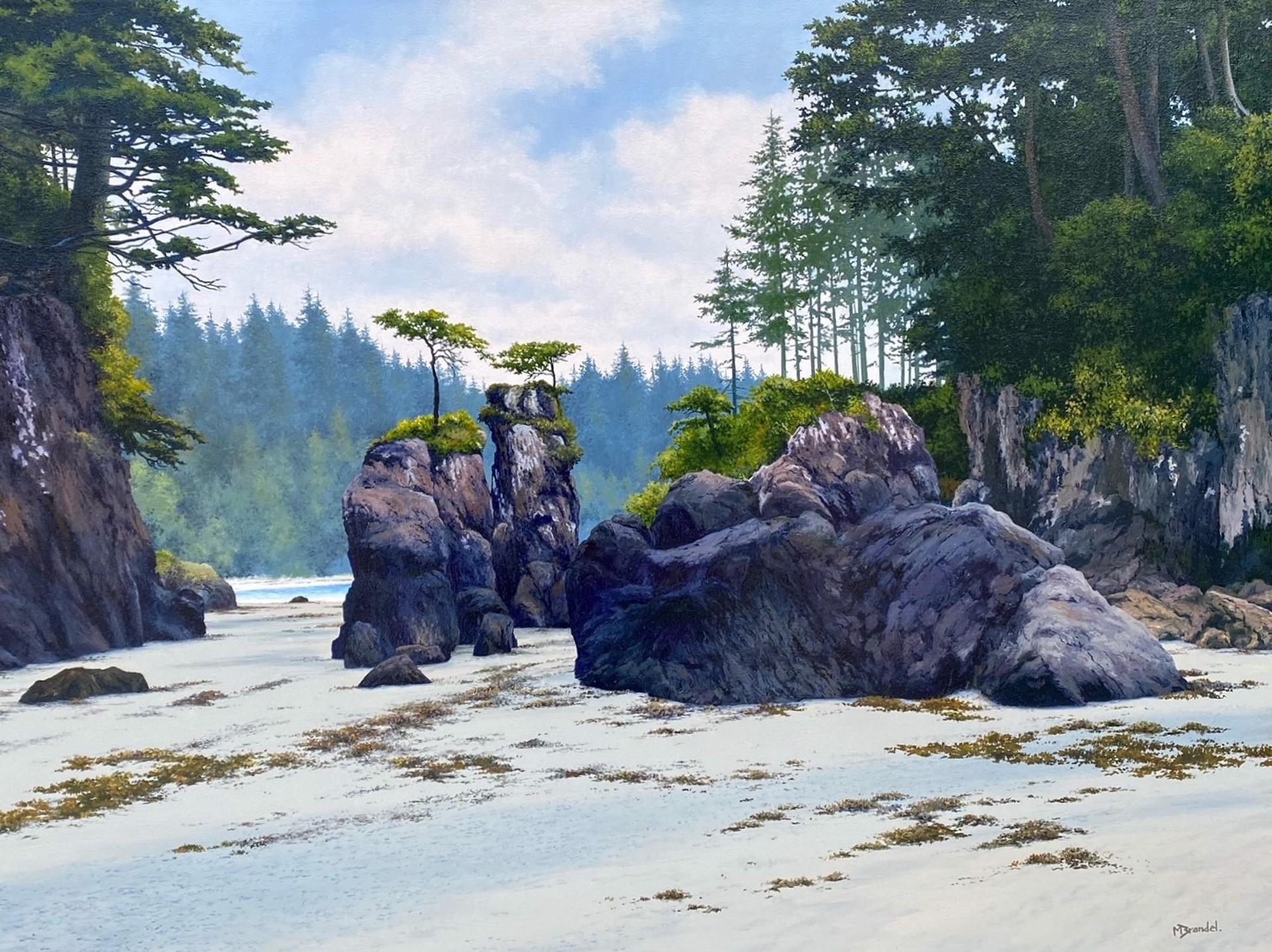 Merv Brandel - San Joseph Bay by Historical Art