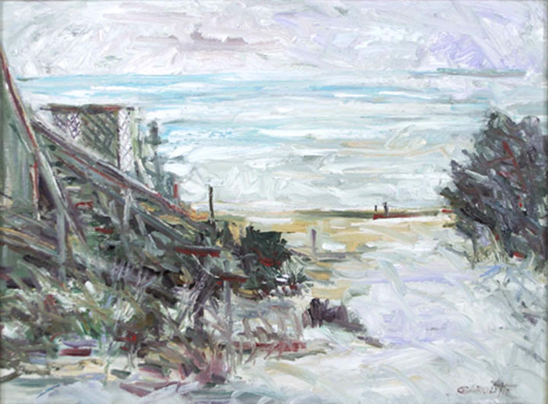 Island Beach by P.J. Garoutte