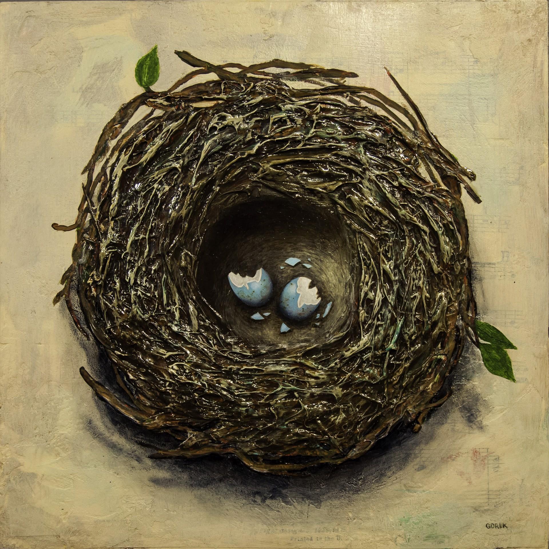 Bird's Nest 2 by Thane Gorek