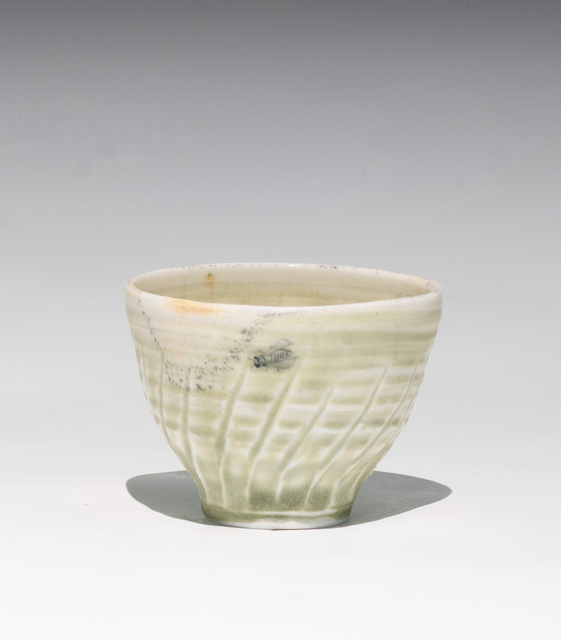 Insect Tea Bowl 4 by Caroline Bottom Anderson