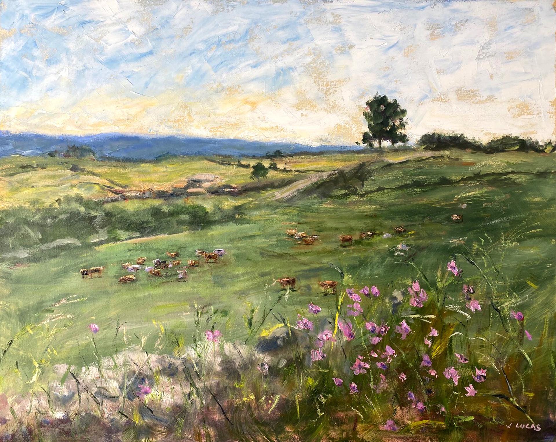 Purple Wildflowers by Janet Lucas Beck