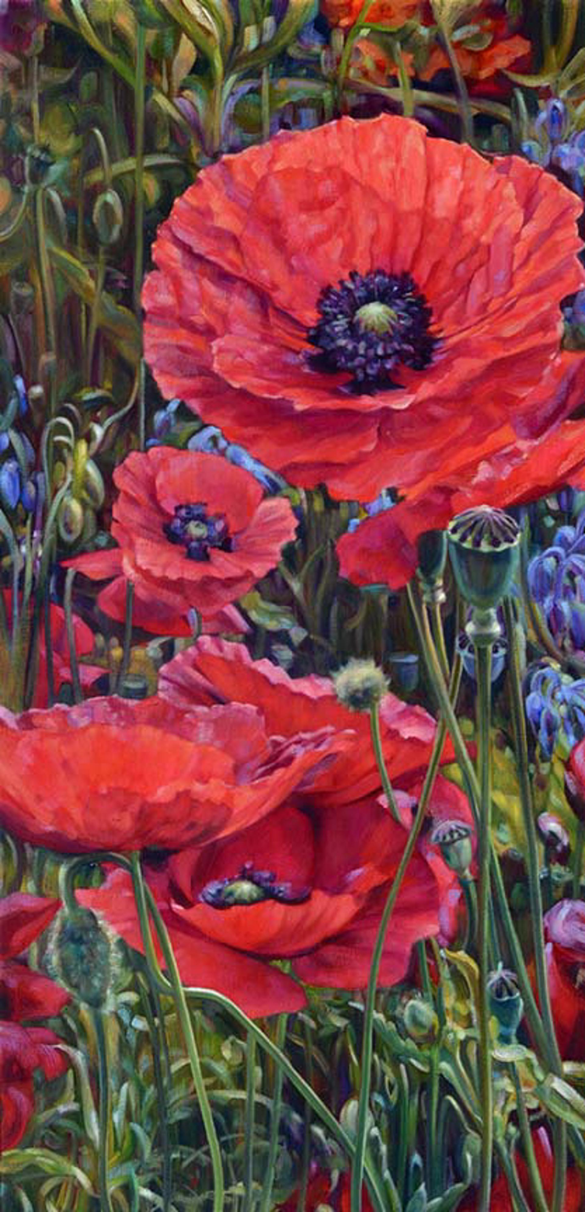 Poppies At Daybreak by Caroline Zimmermann