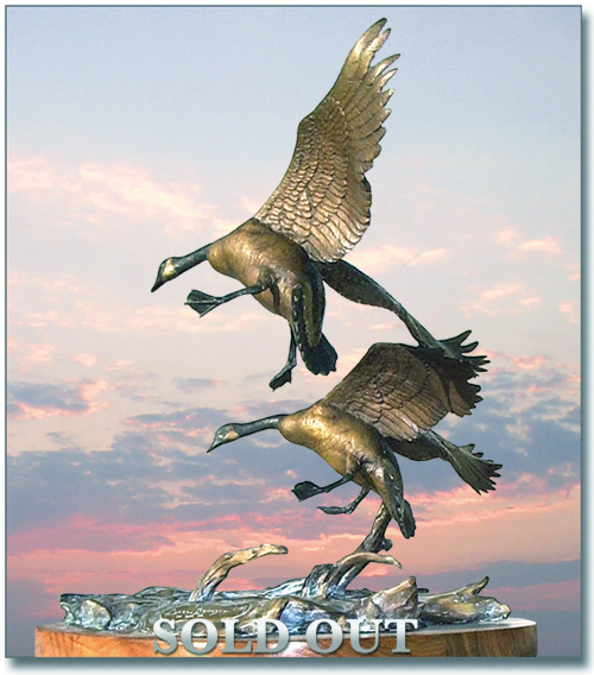 Honker's Landing (Geese) by Clark Bronson