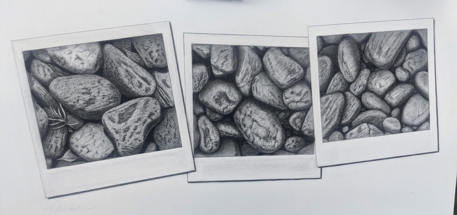 Snapshot Series #5 by Tammy Liu-Haller