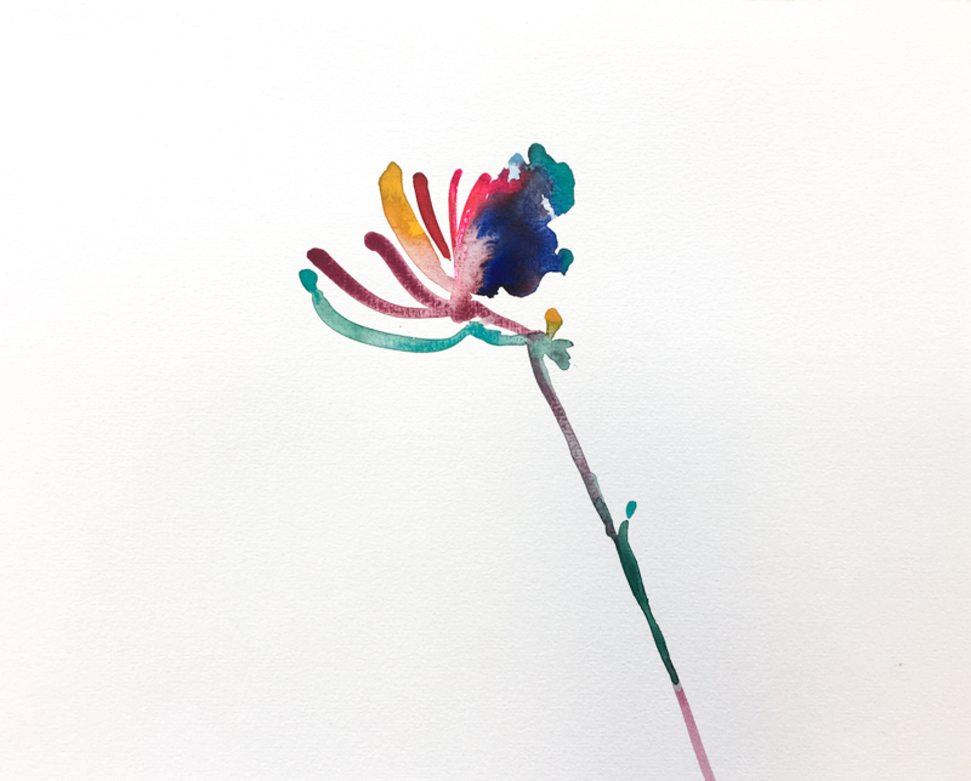 Floral Watercolor No. 3 by Christian Rothmann