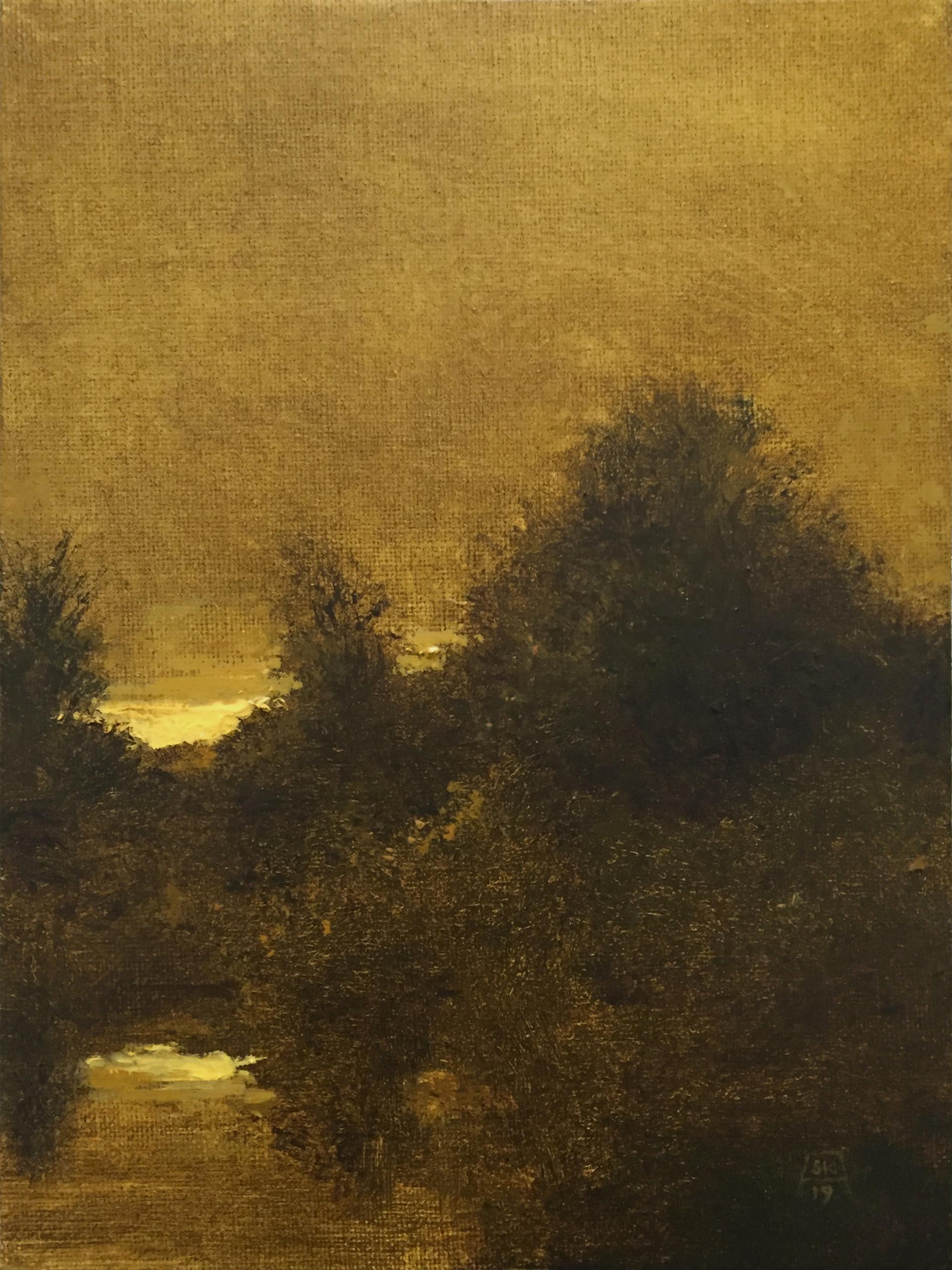 Evening Silhouette by Shawn Krueger