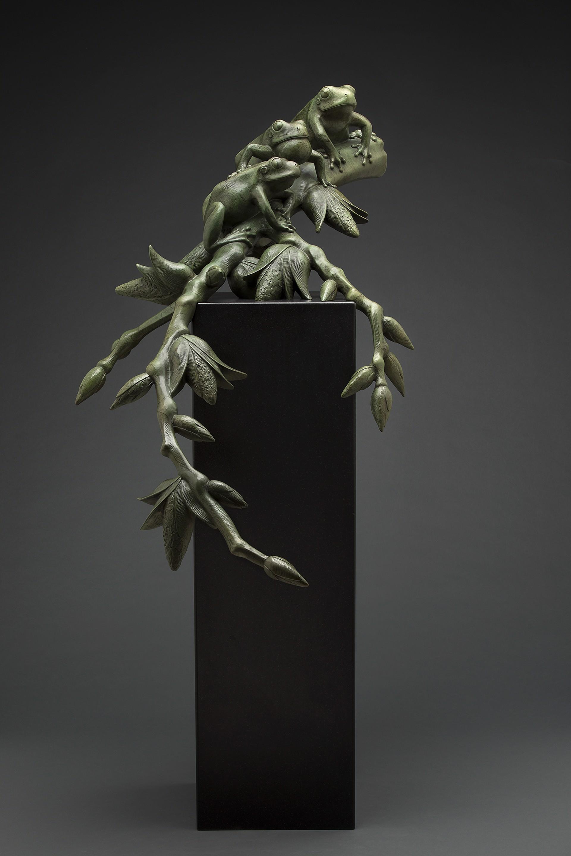 Tree Frogs on Cottonwood by Tony Hochstetler