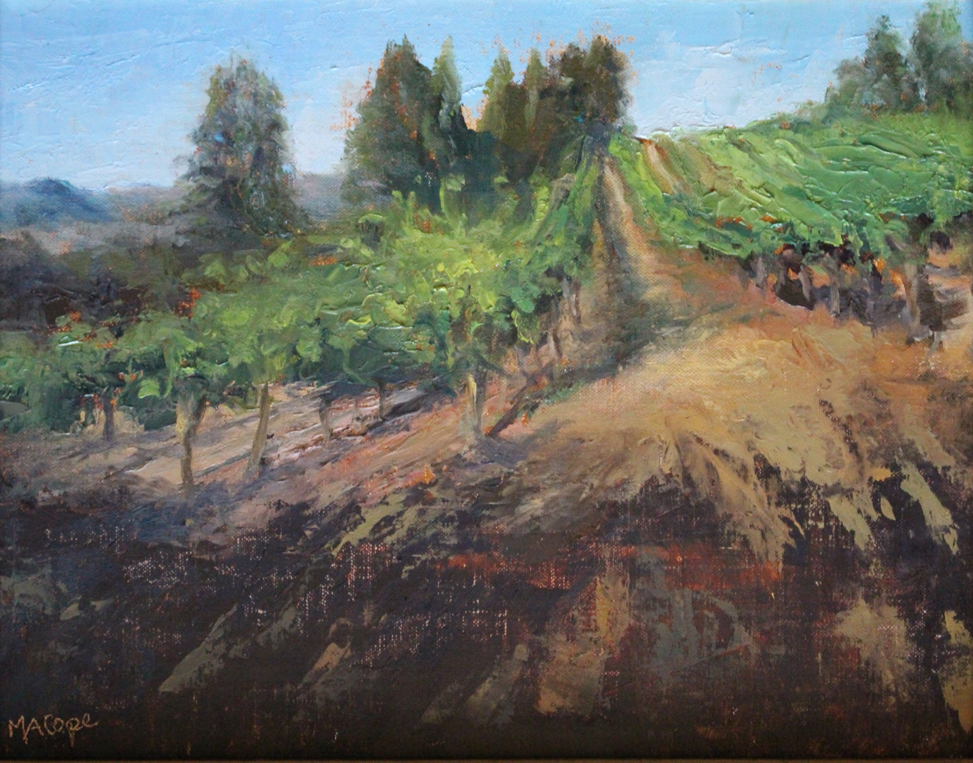 Vineyard View by Mary Ann Cope