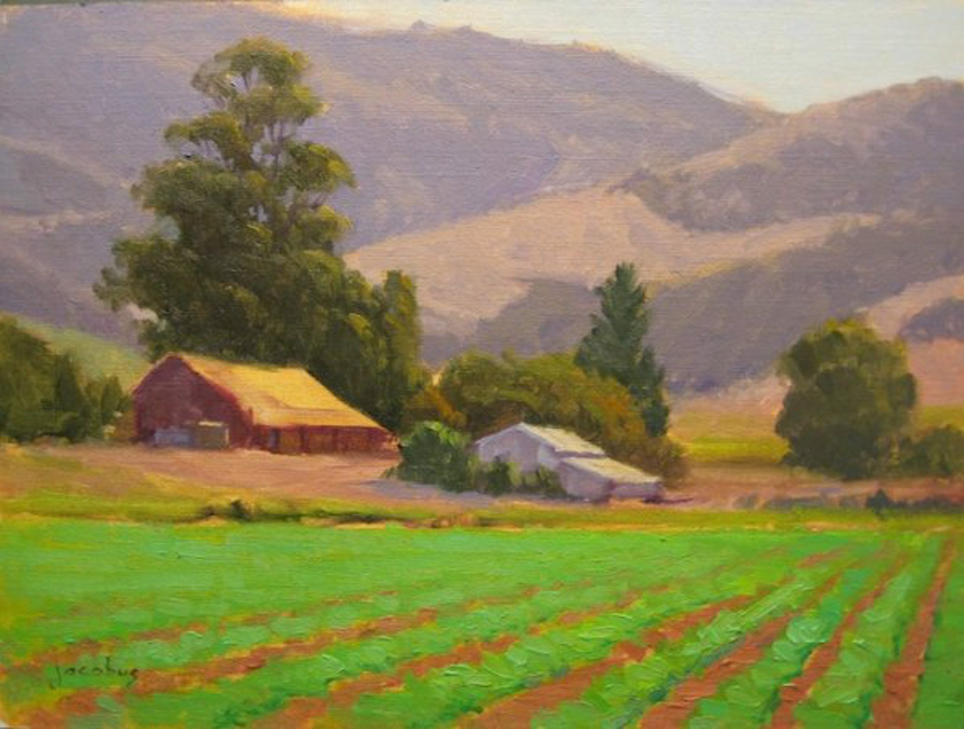 Lompoc Farm by Jacobus Baas