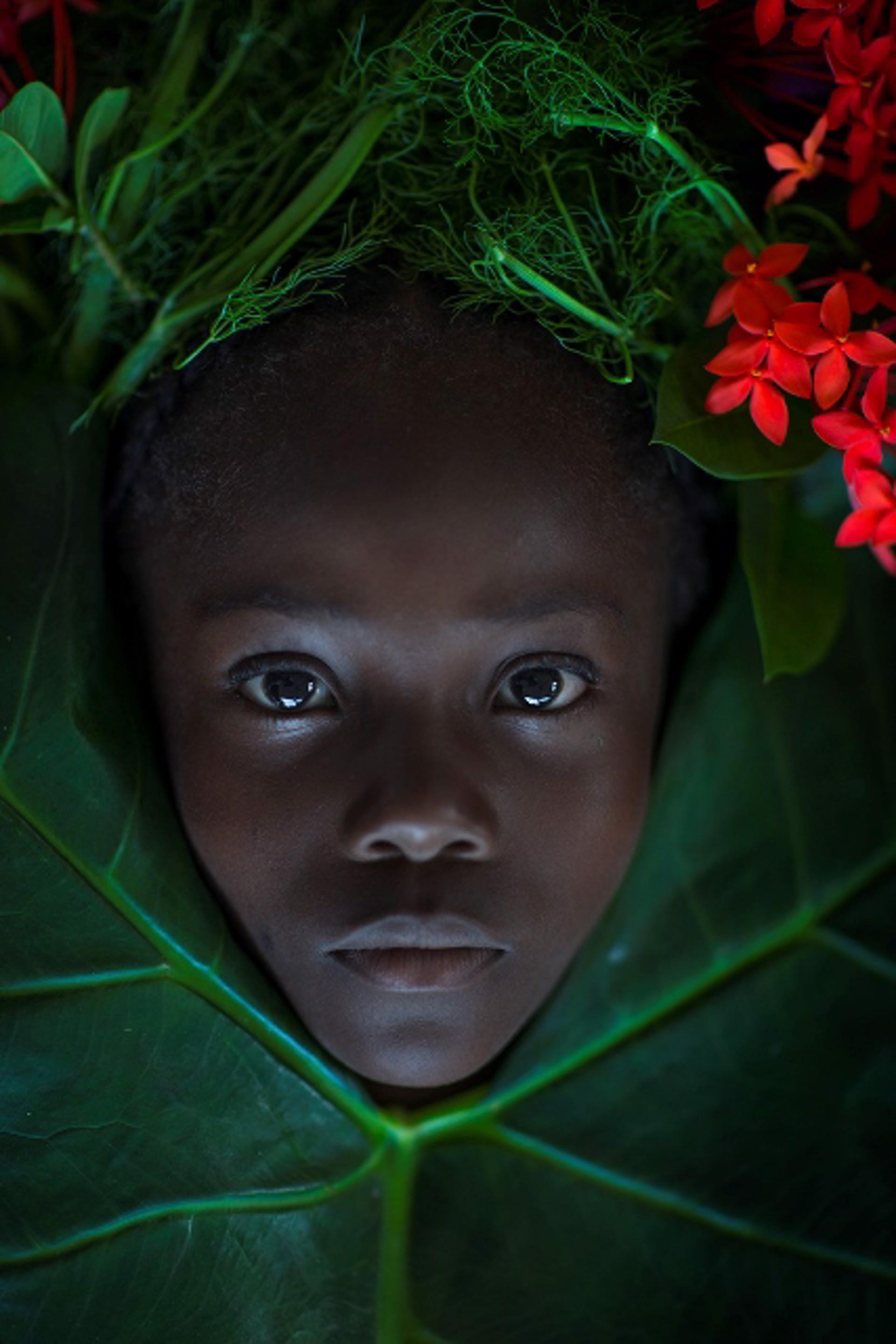 No. 025 by Stephon Senegal