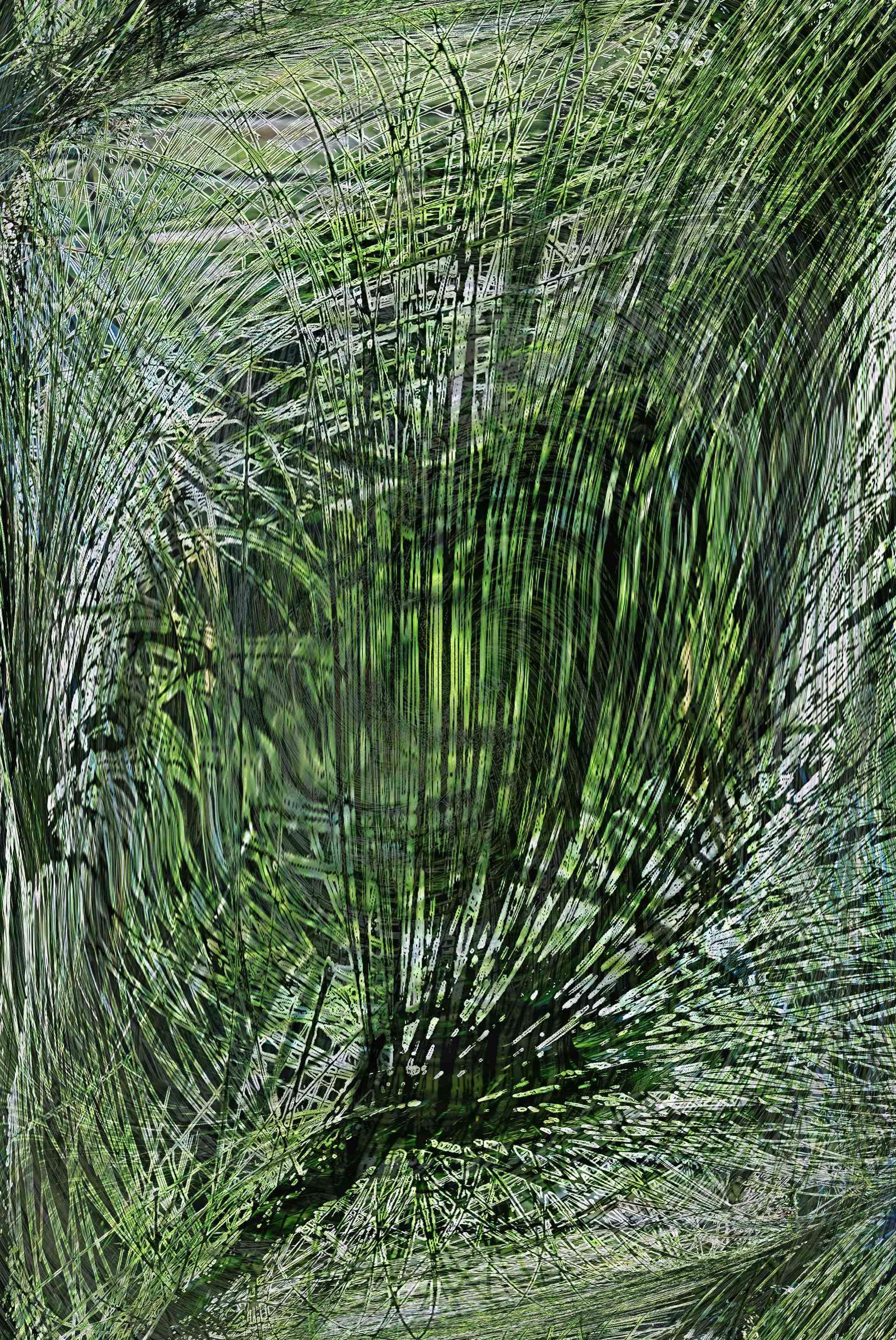 Pinus palustris by Gary Irish