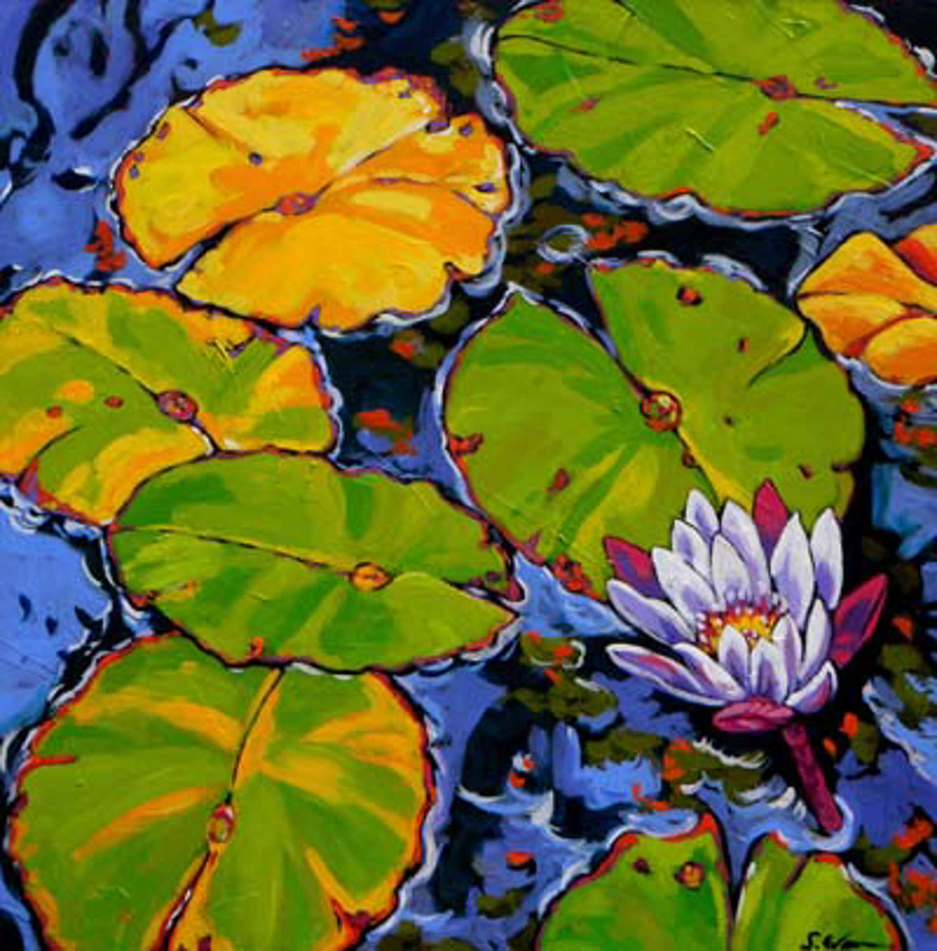 Lily Pads Dance in Light by Sally Evans -- Prints