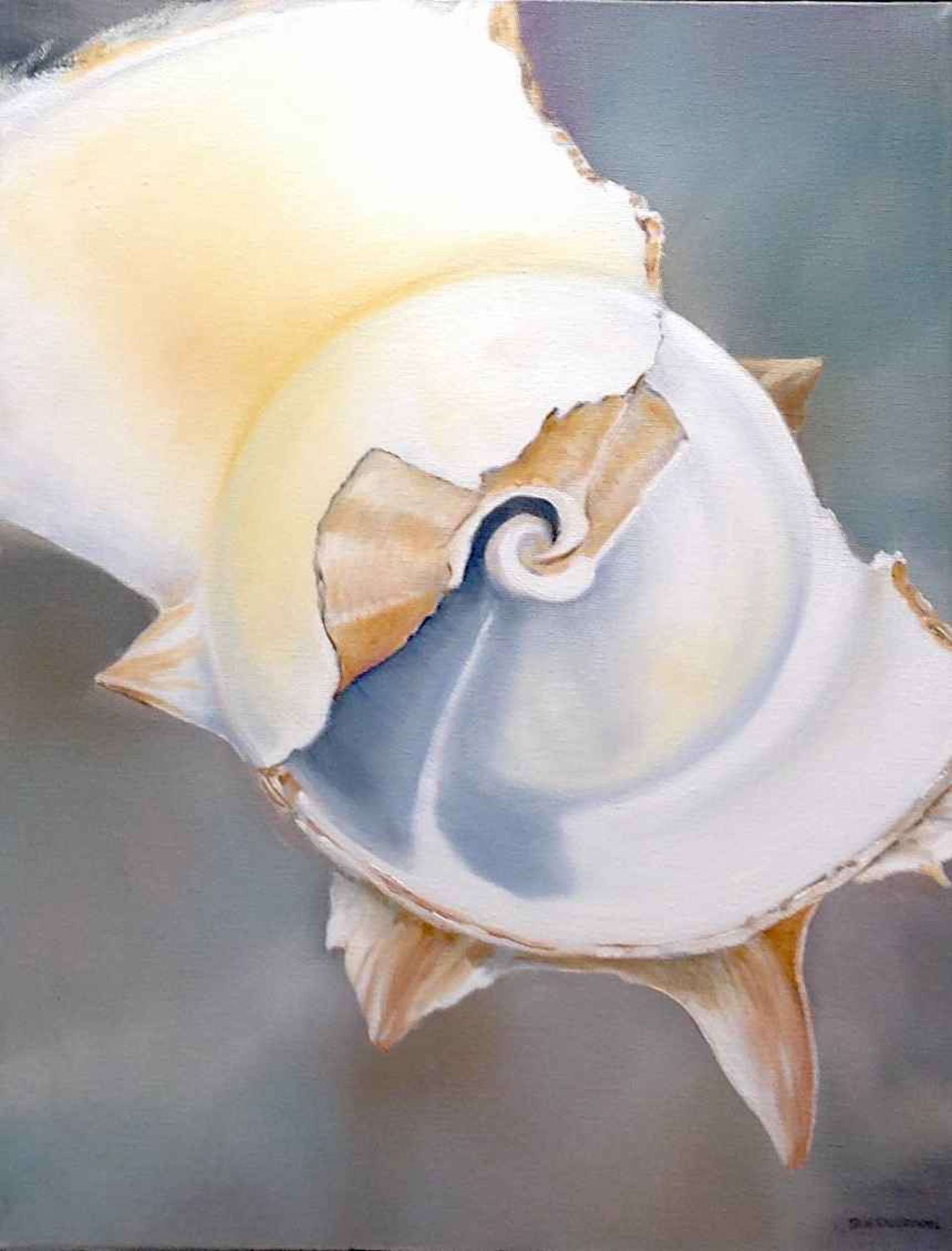 Inner Whorl by Sue Sneddon