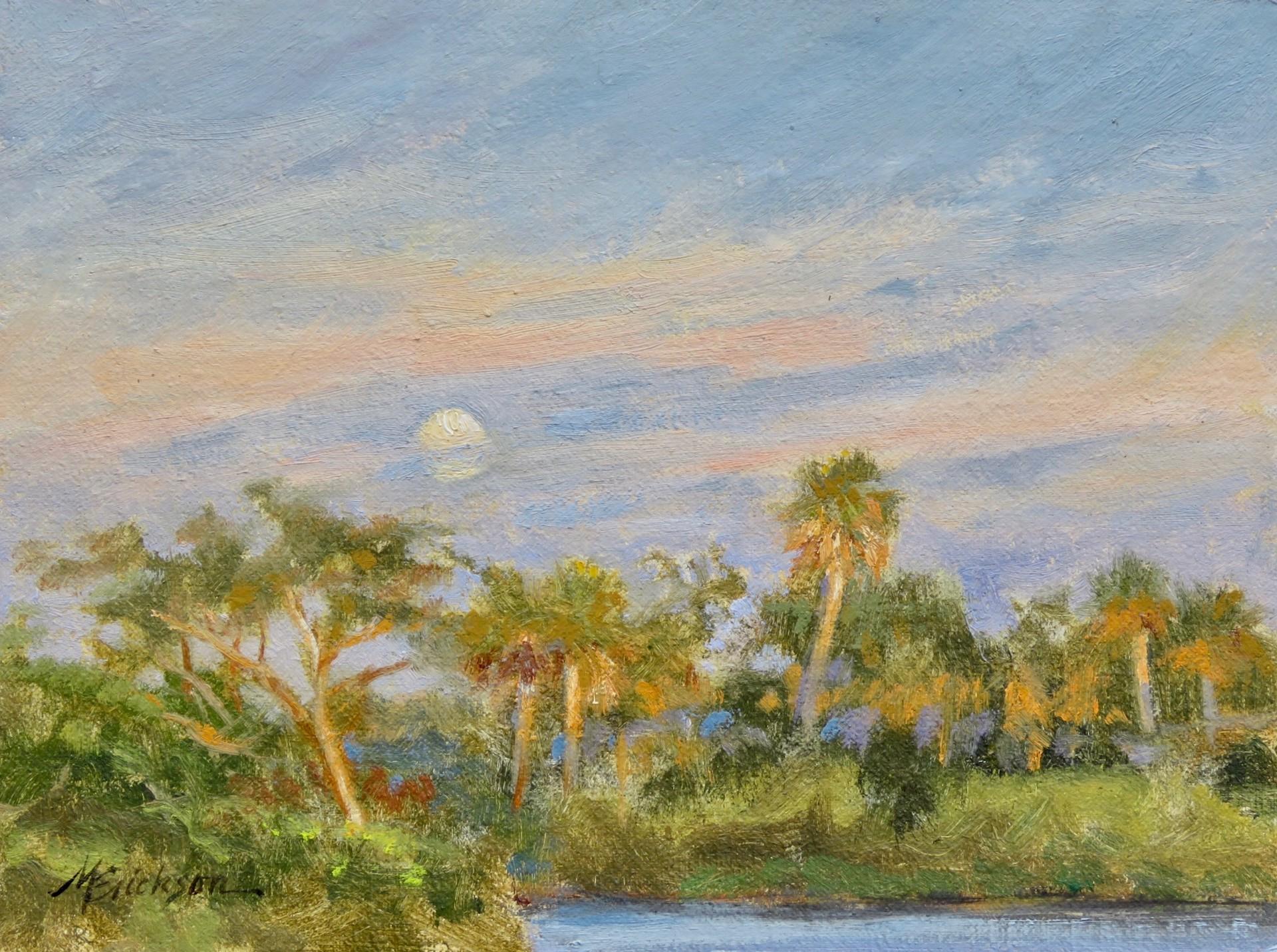 Moonrise by Mary Erickson