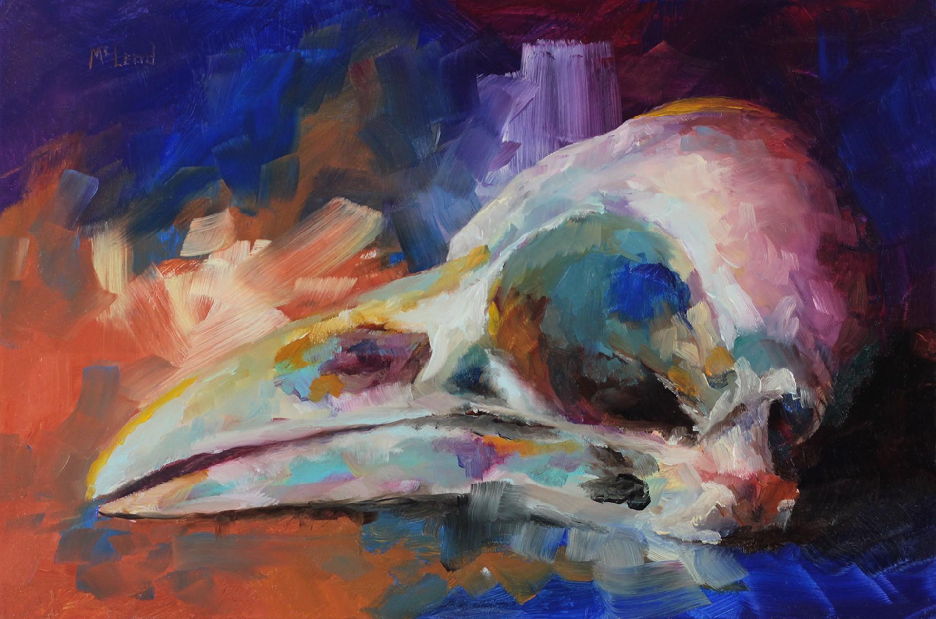 Crow Skull by John McLeod
