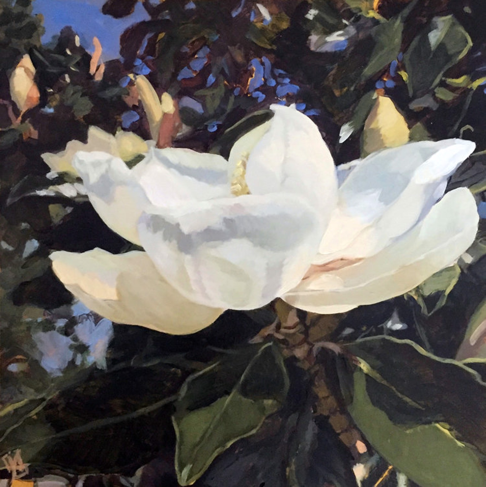 Magnolia by Julie Larick