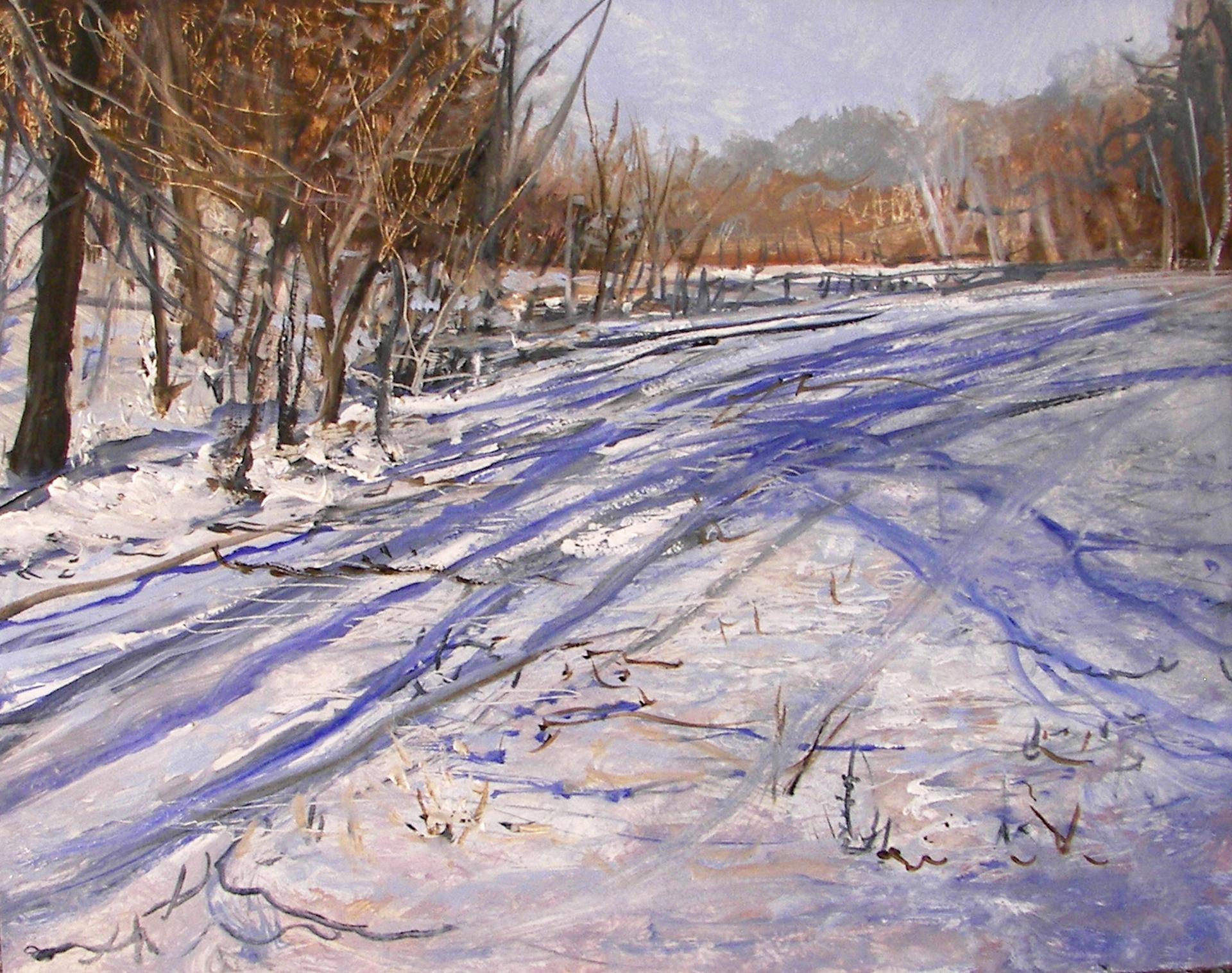 Winter Shadows by Frank Baggett