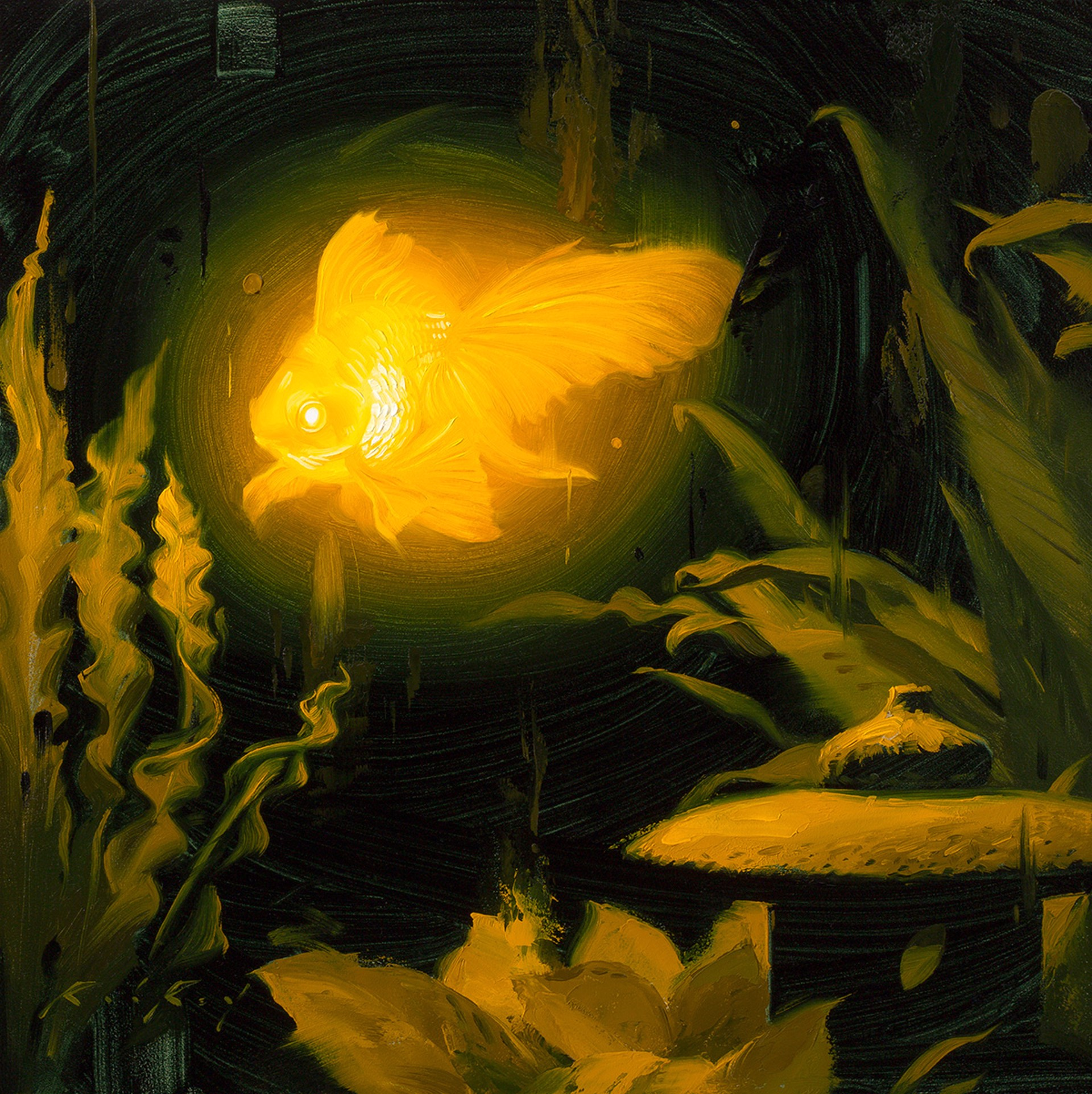 Bioluminescence Goldie by Rob Rey
