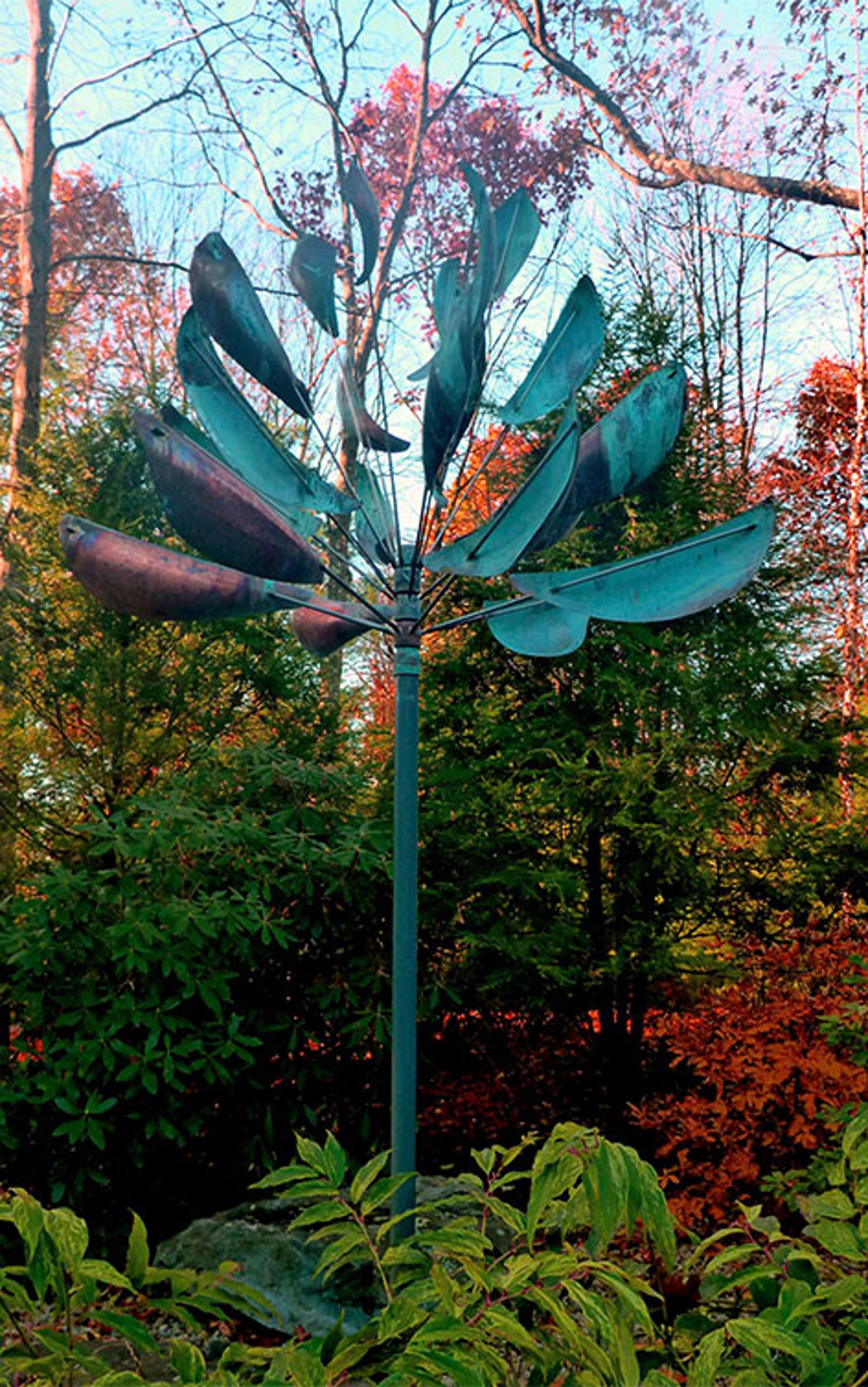 Agave  by Lyman Whitaker