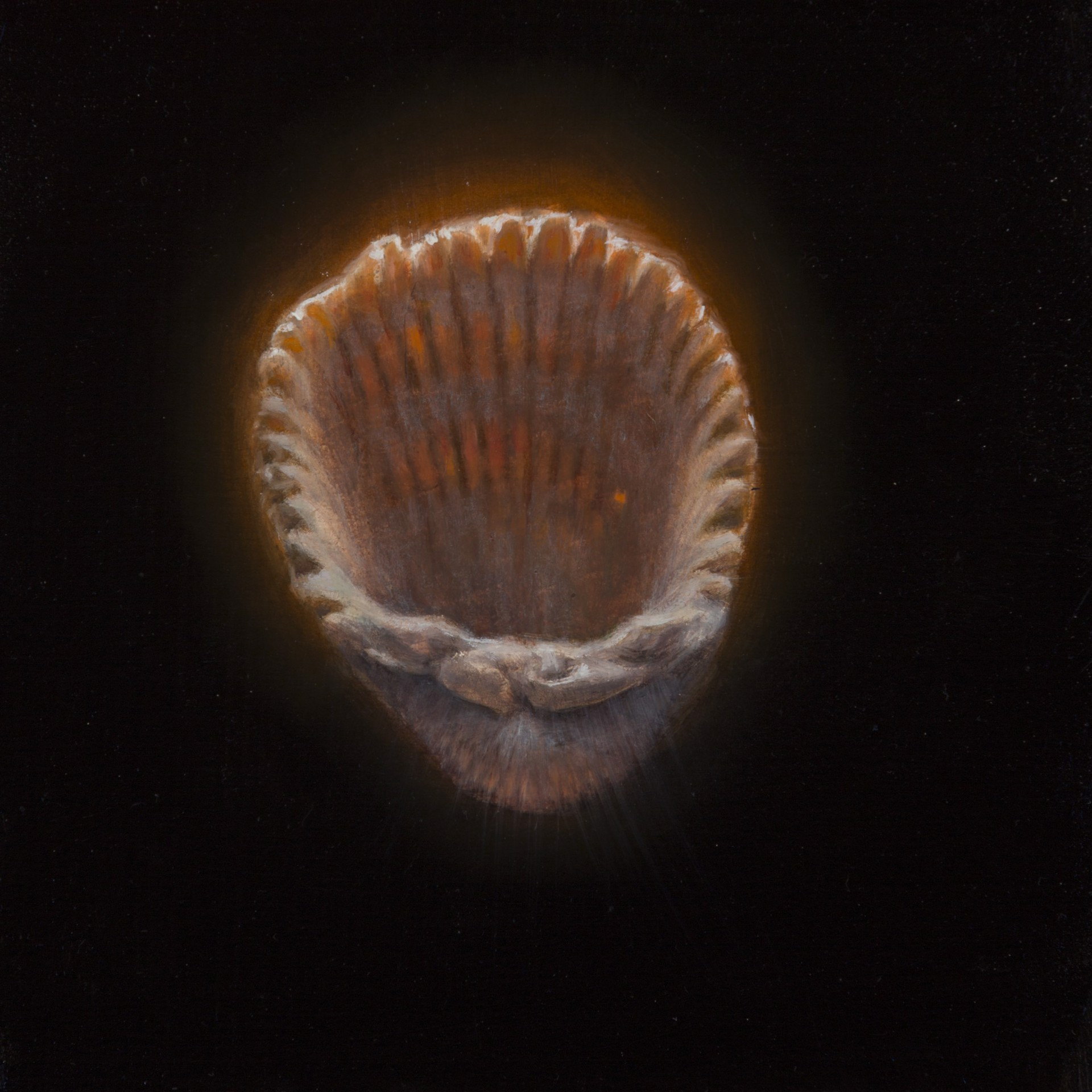 Shell 16 by Gregory Block