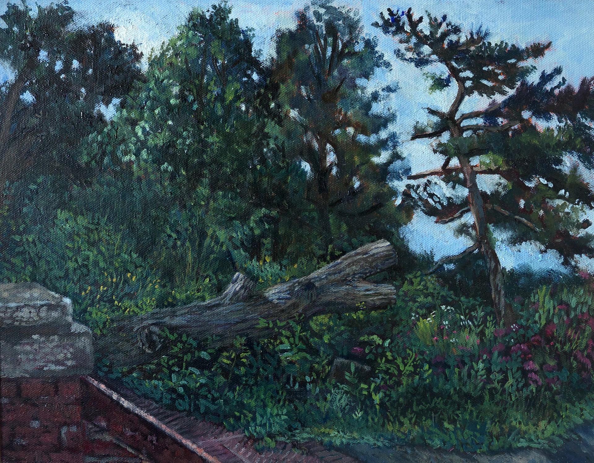My Secret Garden by Kim Power