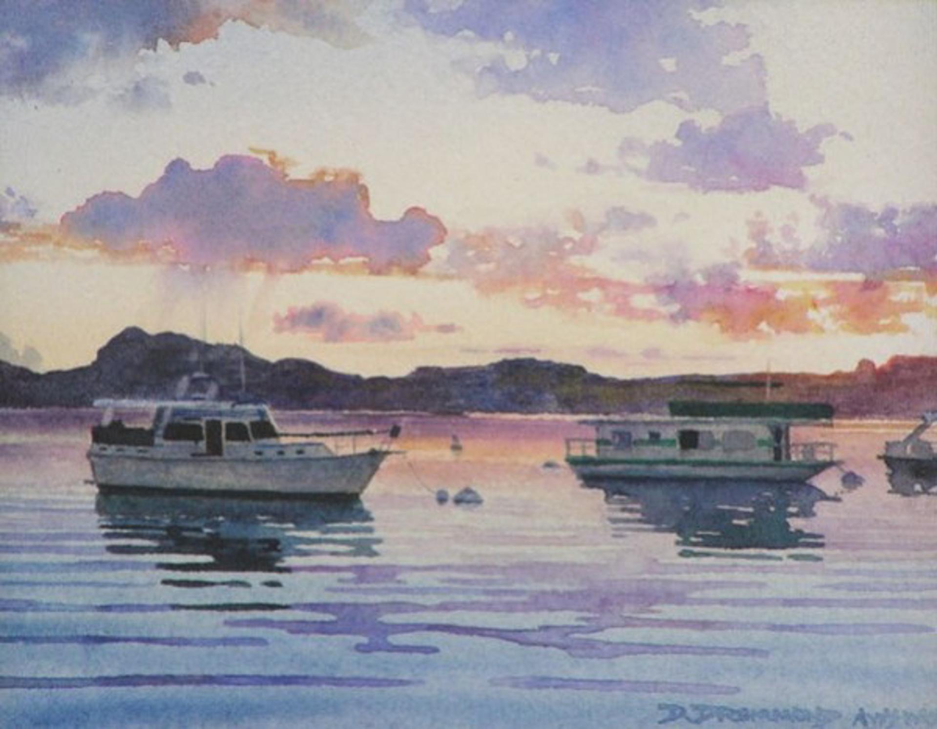 Buoy Field Morning by David Drummond
