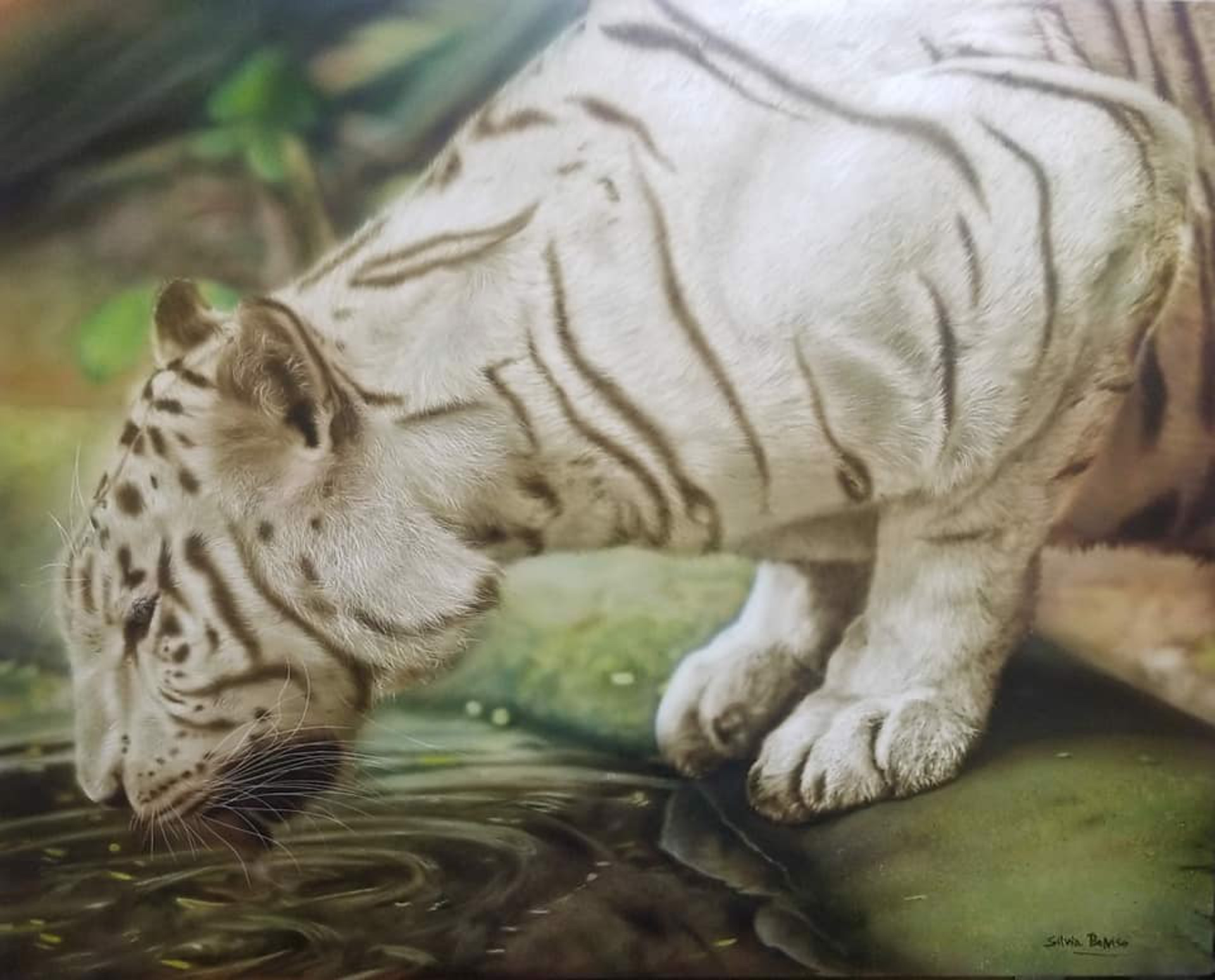 White Tiger III by Silvia Belviso