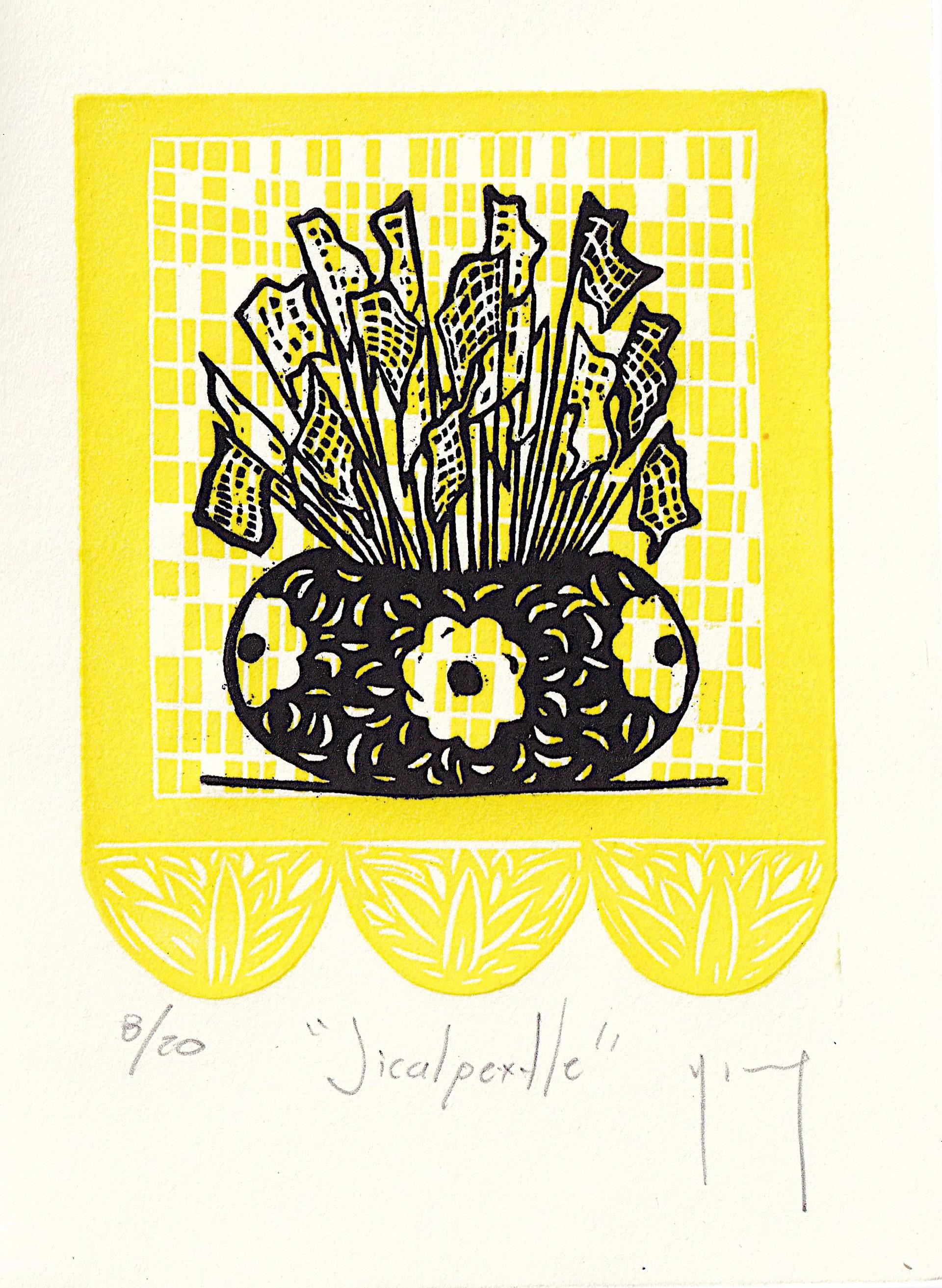 Serie Oaxaca (Jicalpextle) by Miguel Jimenez Martinez