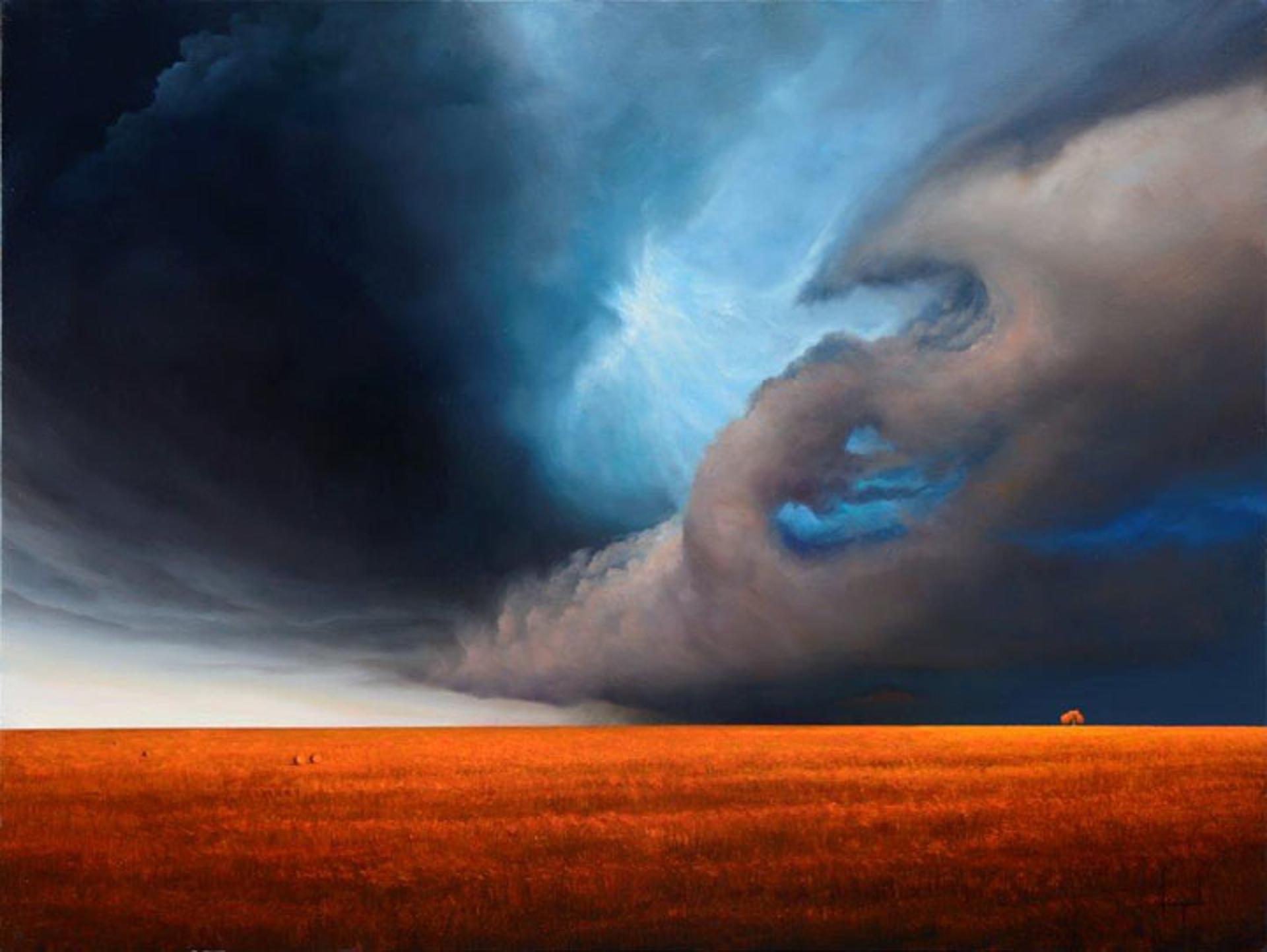 Blessing Rain by Dario Campanile