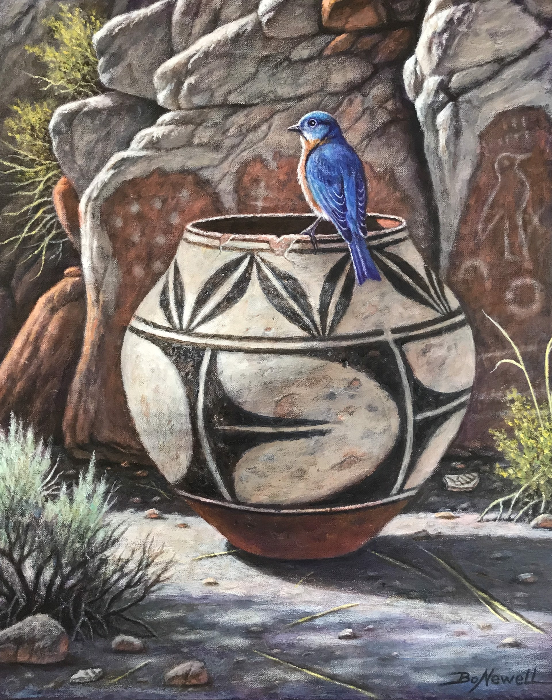 Western Bluebird by Bo Newell