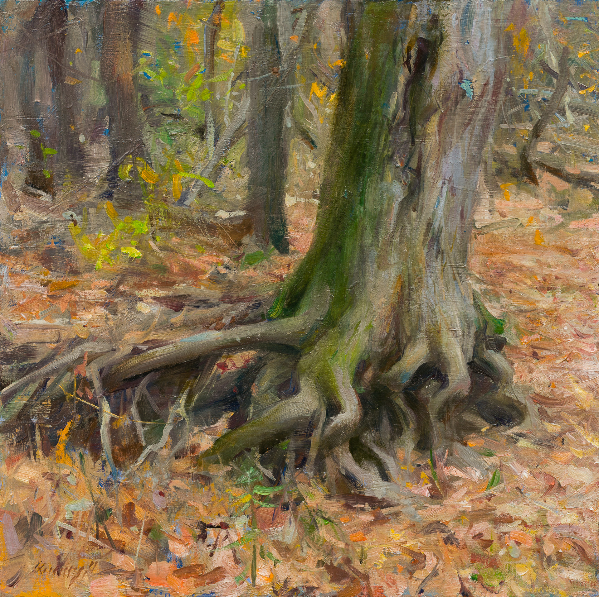 Exposed Roots - West Virginia by Quang Ho
