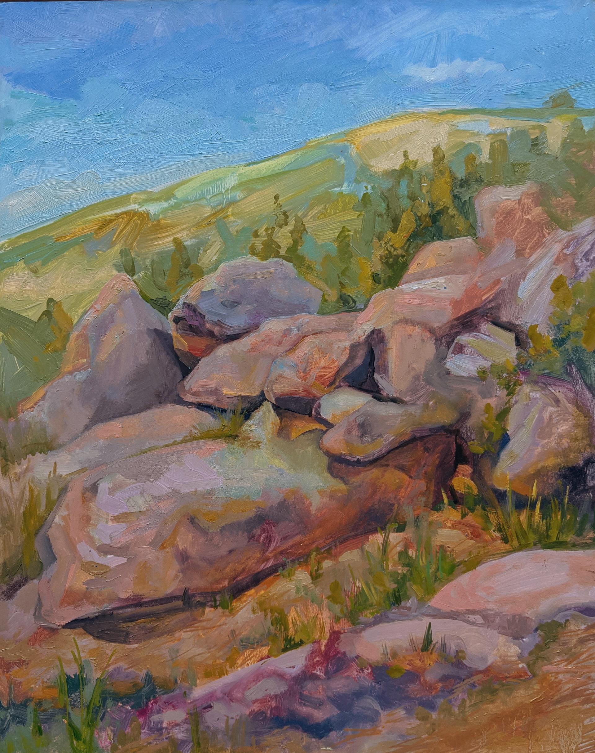 Rocks Tumbling by Charis Carmichael Braun