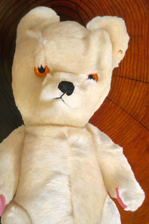 Bear by Josh Talbott