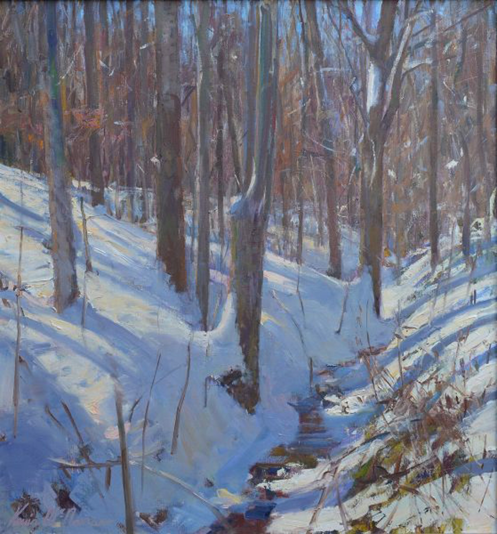 Long Shadow Woodland by Kevin McNamara