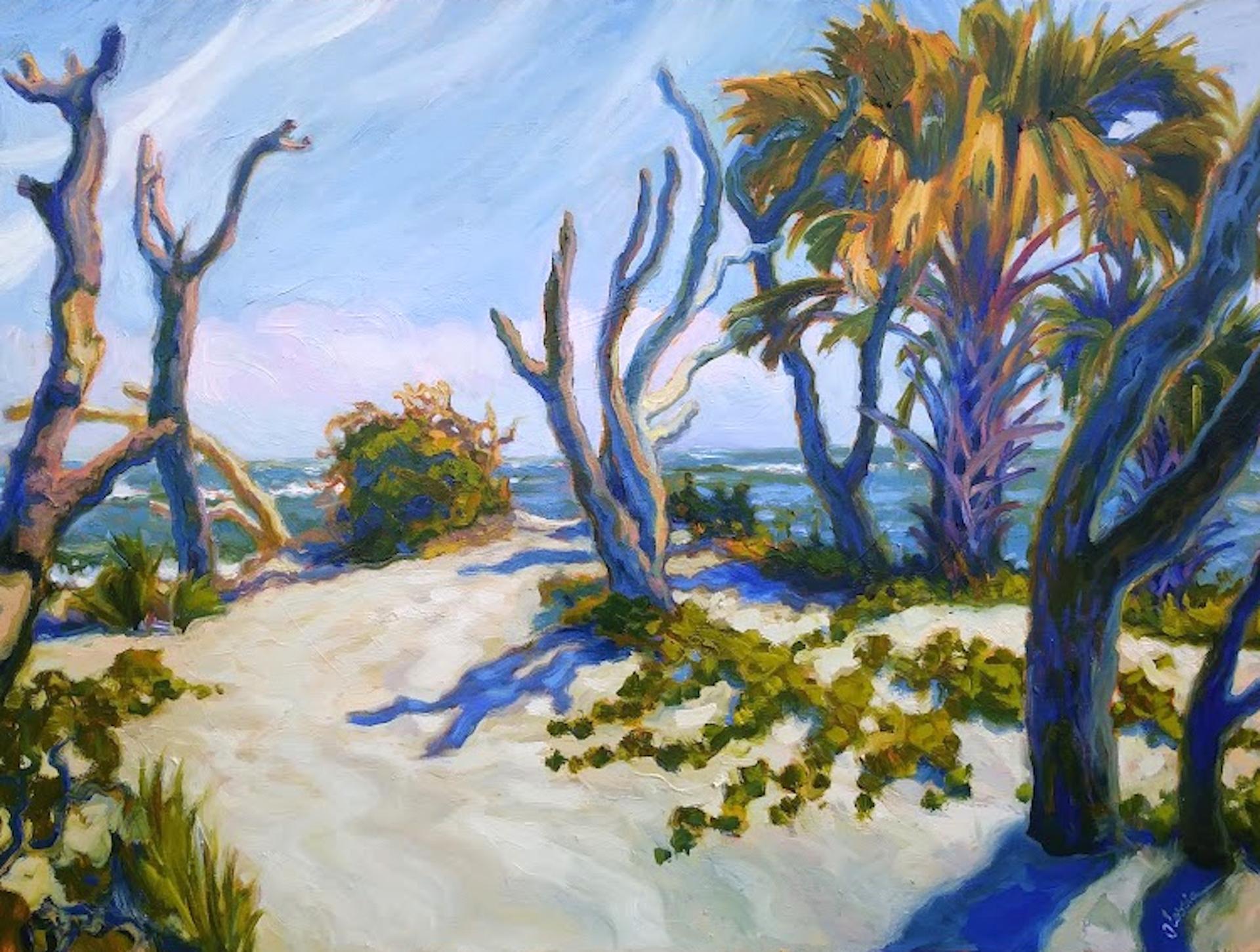 Folly Driftwood Point by Olessia Maximenko