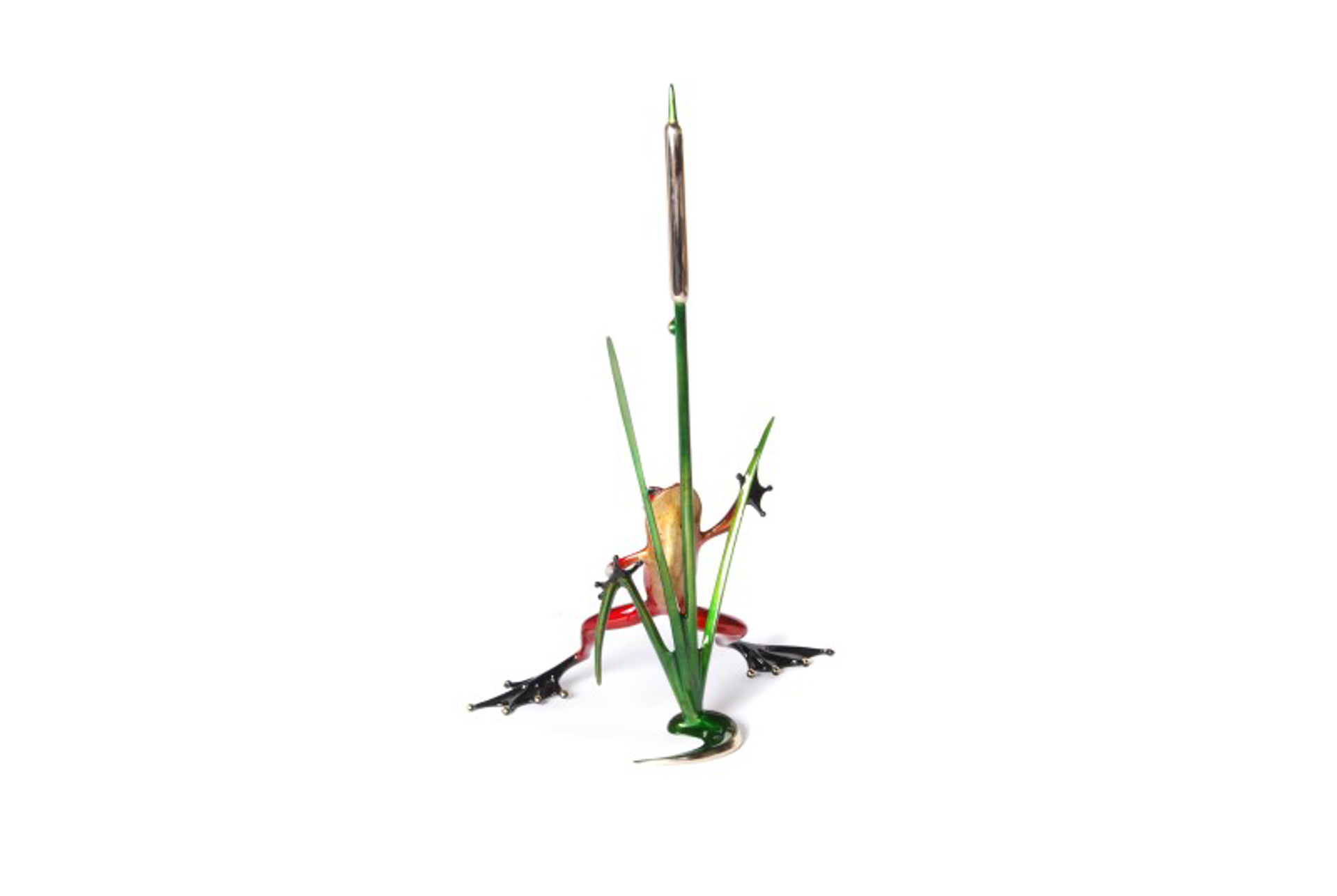 Cattail by The Frogman