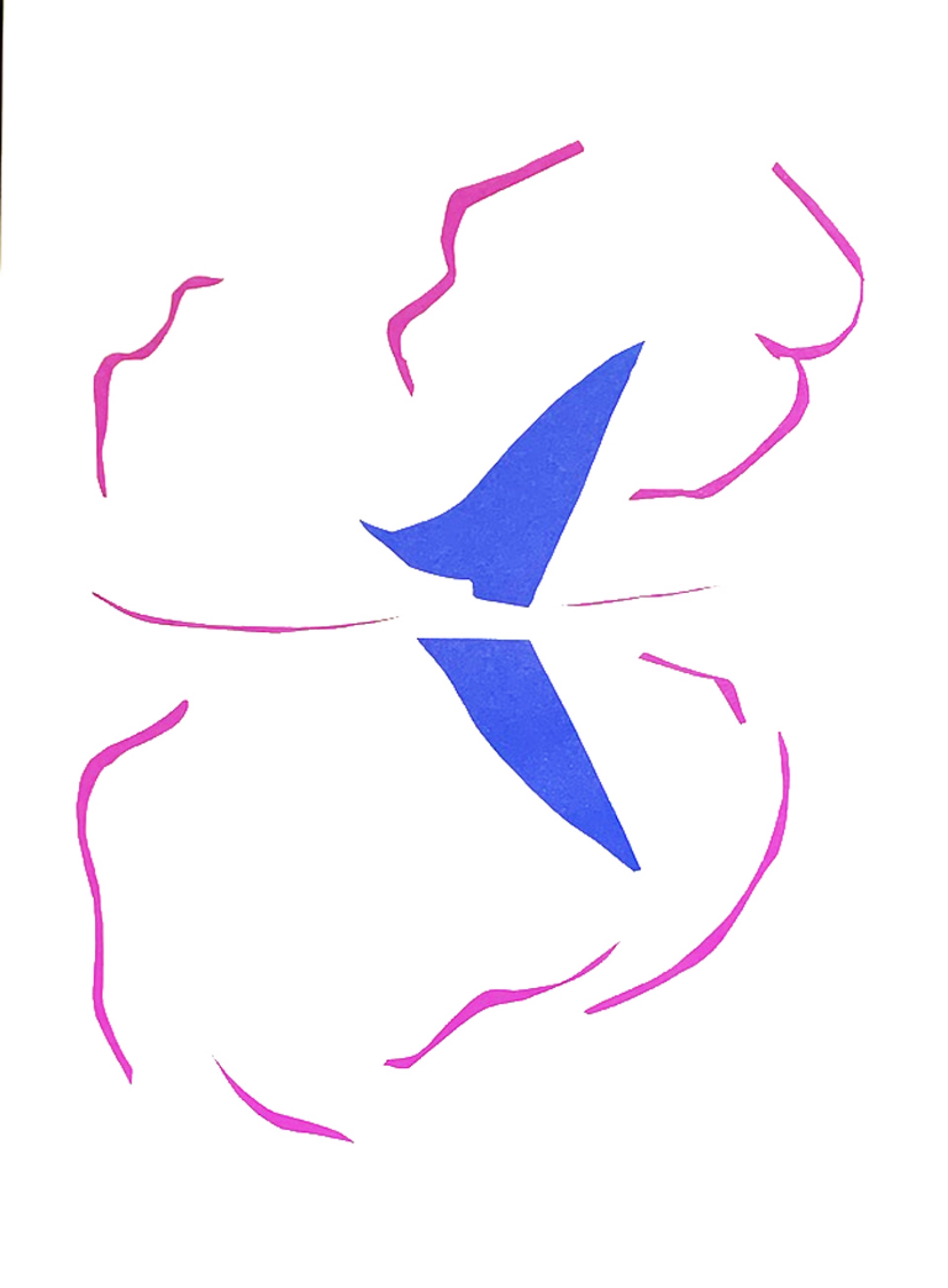 Bateau by Henri Matisse (1869 - 1954)