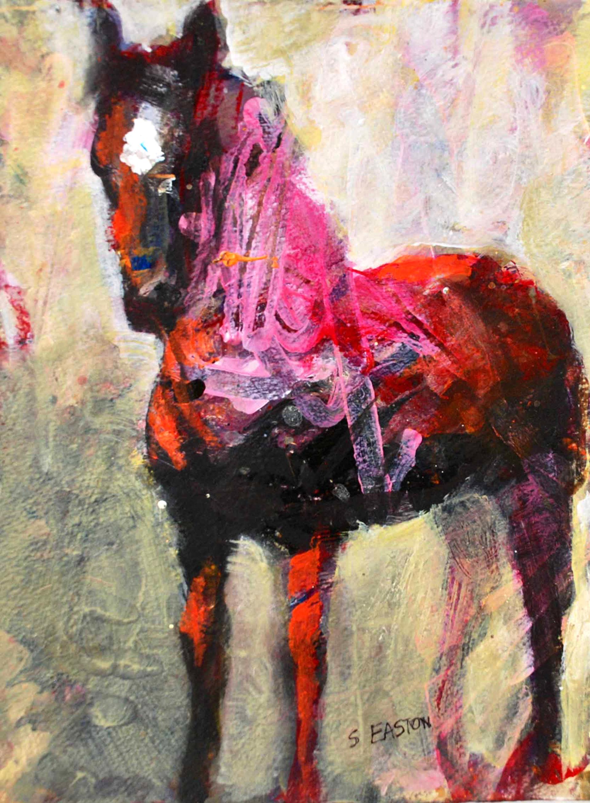 Up Close by Susan Easton Burns