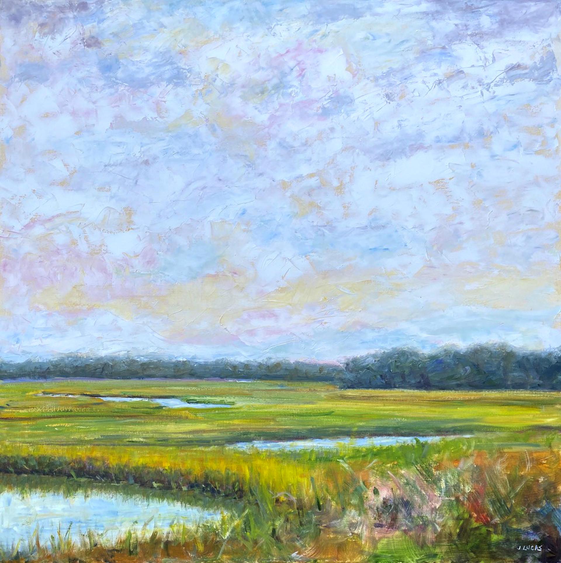 Carolina Marsh by Janet Lucas Beck