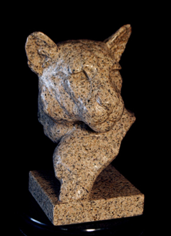 Cougar's Head Bust by Melvin Johansen