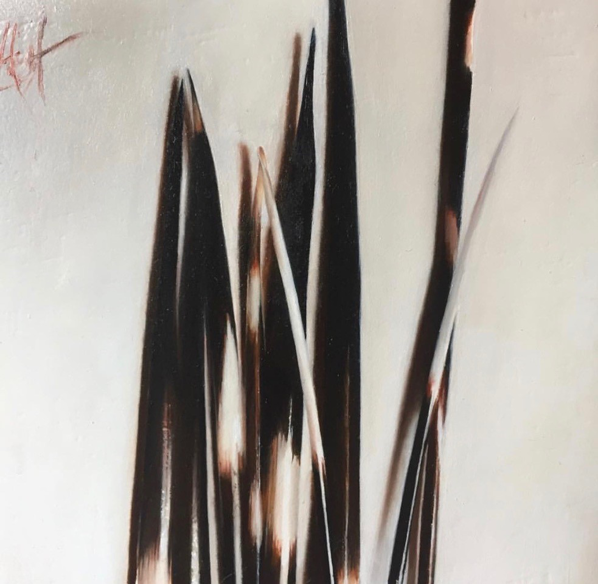 Quills by Emma Hirst