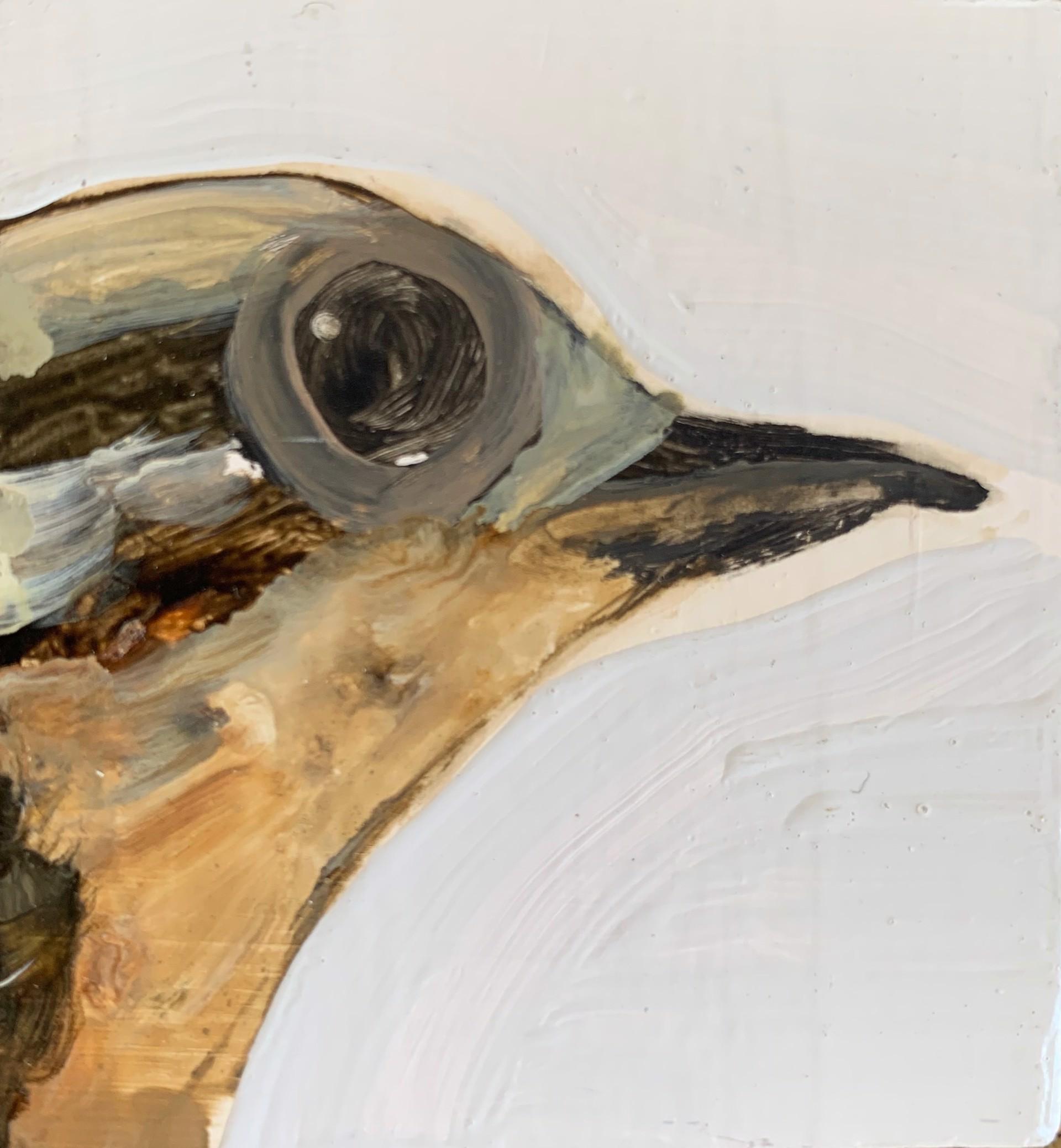 Little Bird #5 by Diane Kilgore Condon