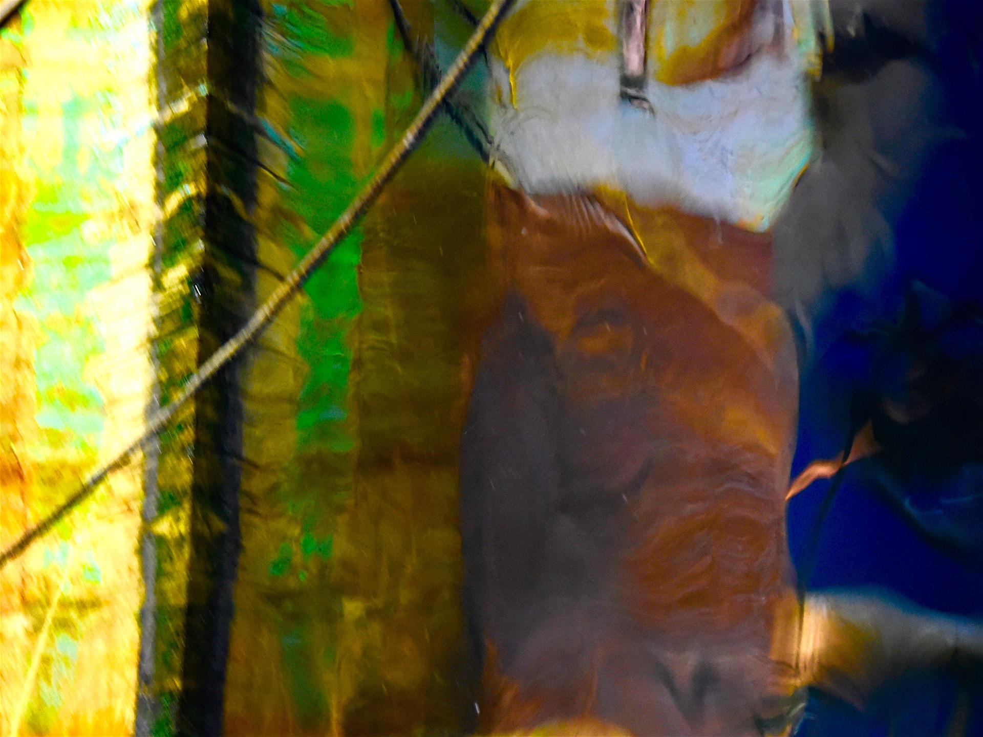 Montauk Reflections #18 by Kat O'Neill